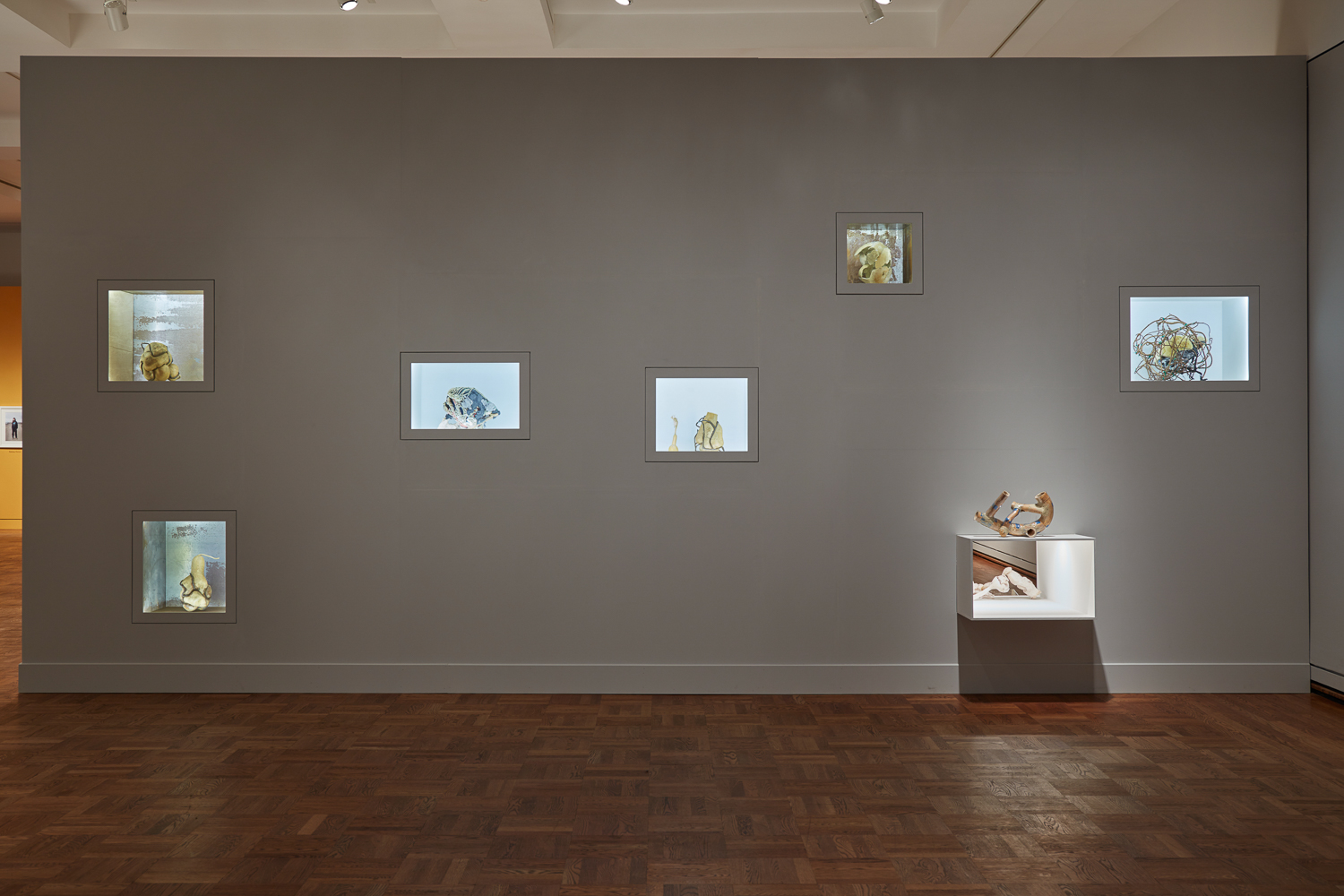 Installation view from  the map is not the territory , curated by Grace Kook-Anderson, Portland Art Museum  Photos by Ben Cort, Courtesy of the Portland Art Museum