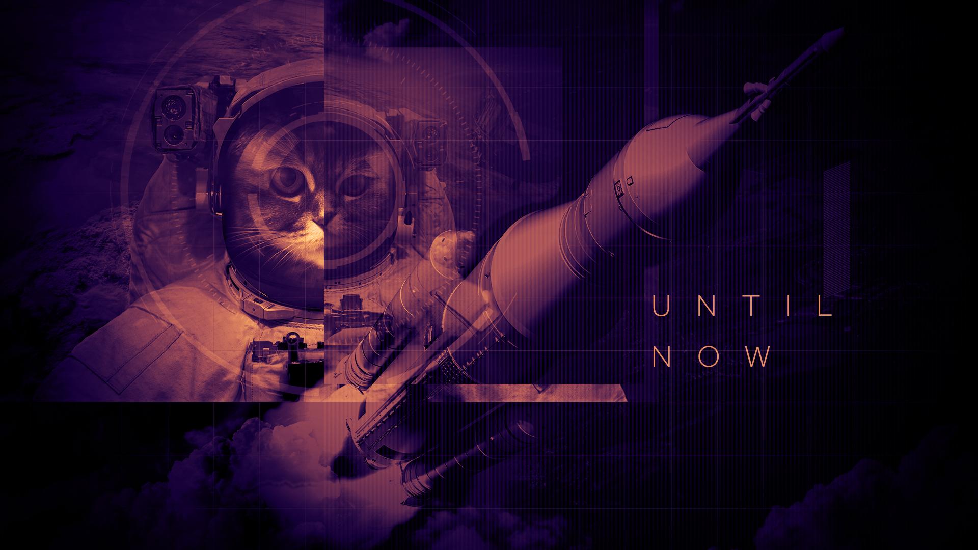 04 Space Cat.jpg