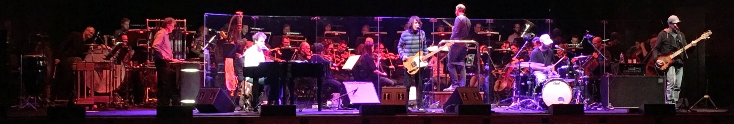 The Whitlams with the Melbourne Symphony Orchestra