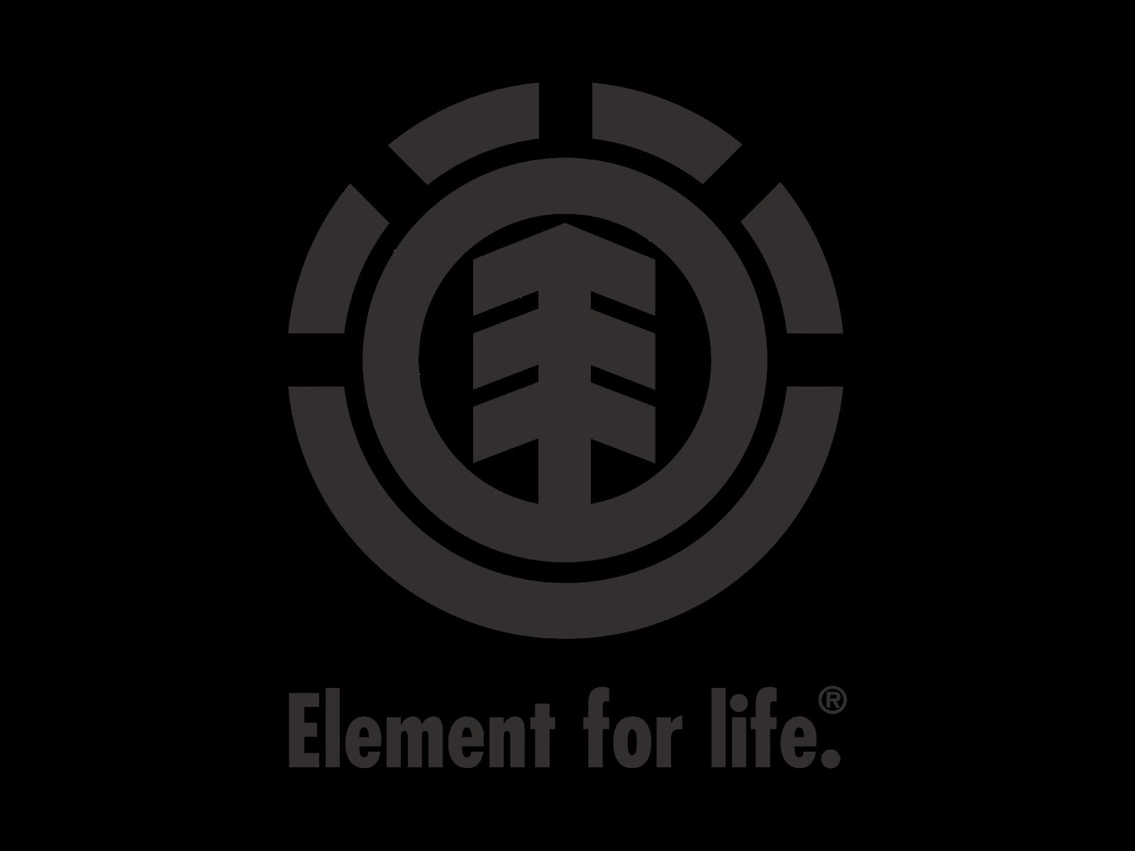 kisspng-element-skateboards-logo-skateboarding-image-logo-element-for-life-vector-cdr-amp-png-hd-gudr-5c5c87e1e7e3d2.7721136915495679699498.png