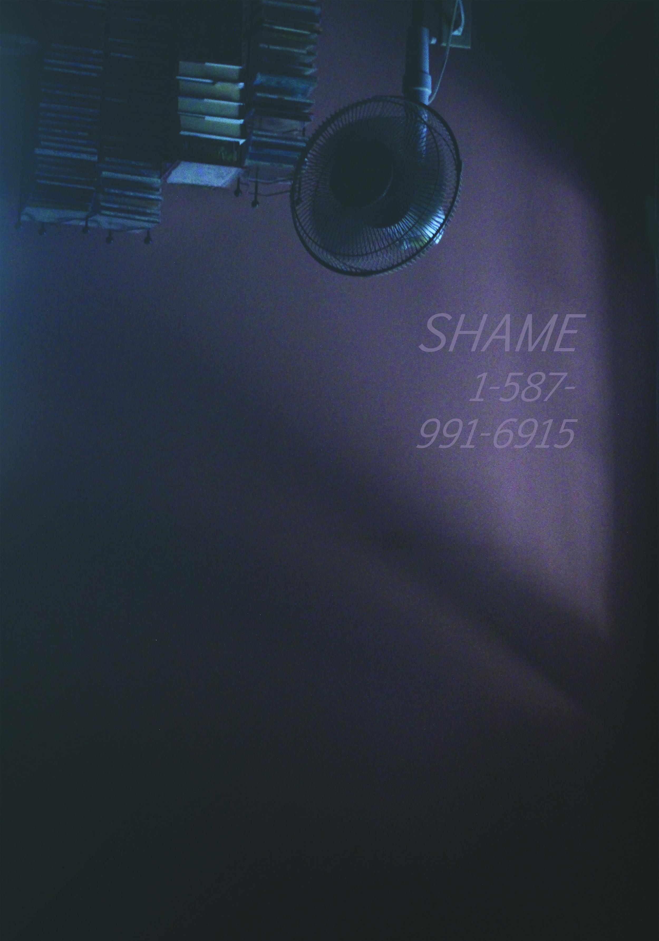 Shame Hotline, 2016