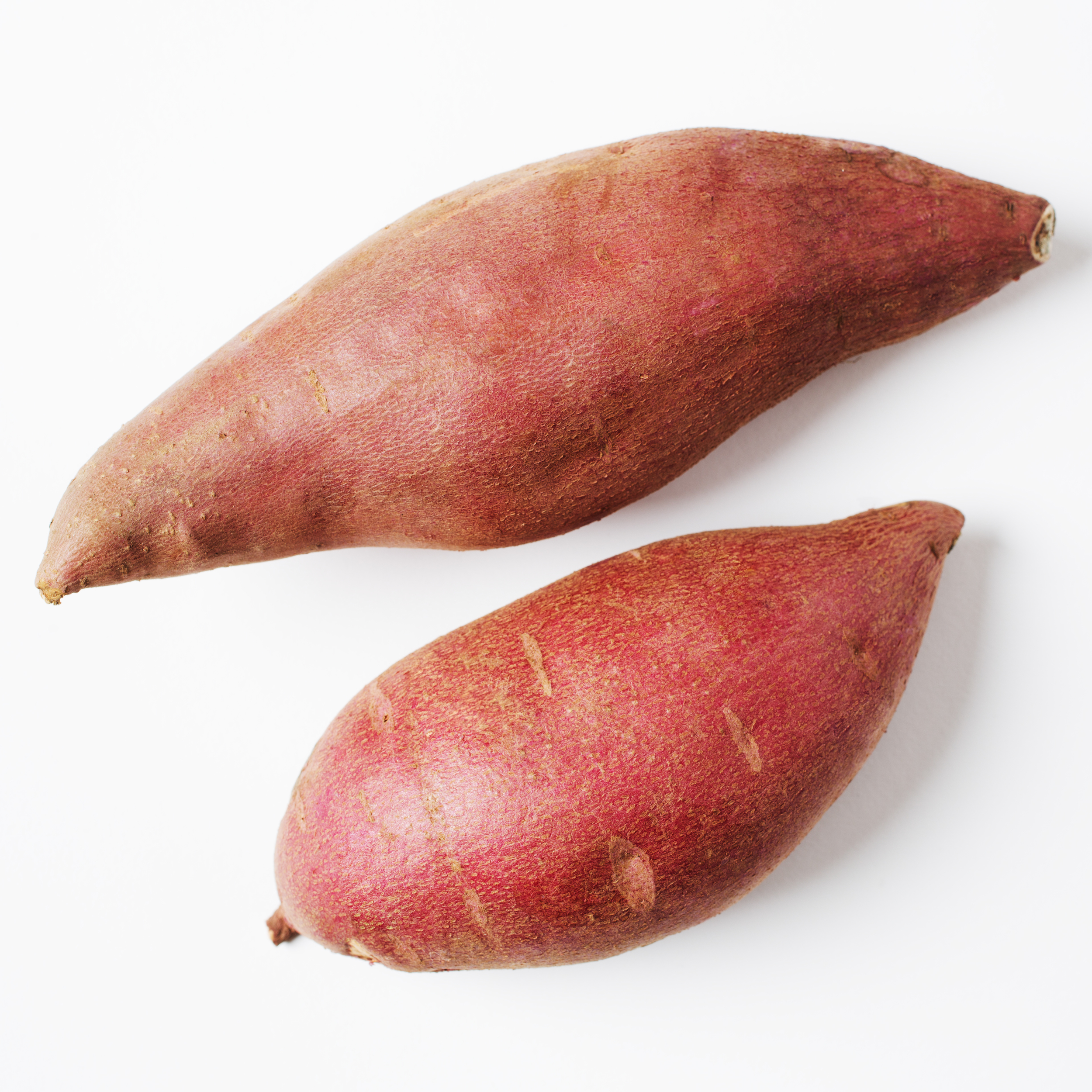 5-potatoes_X3A8074-f-sq.jpg