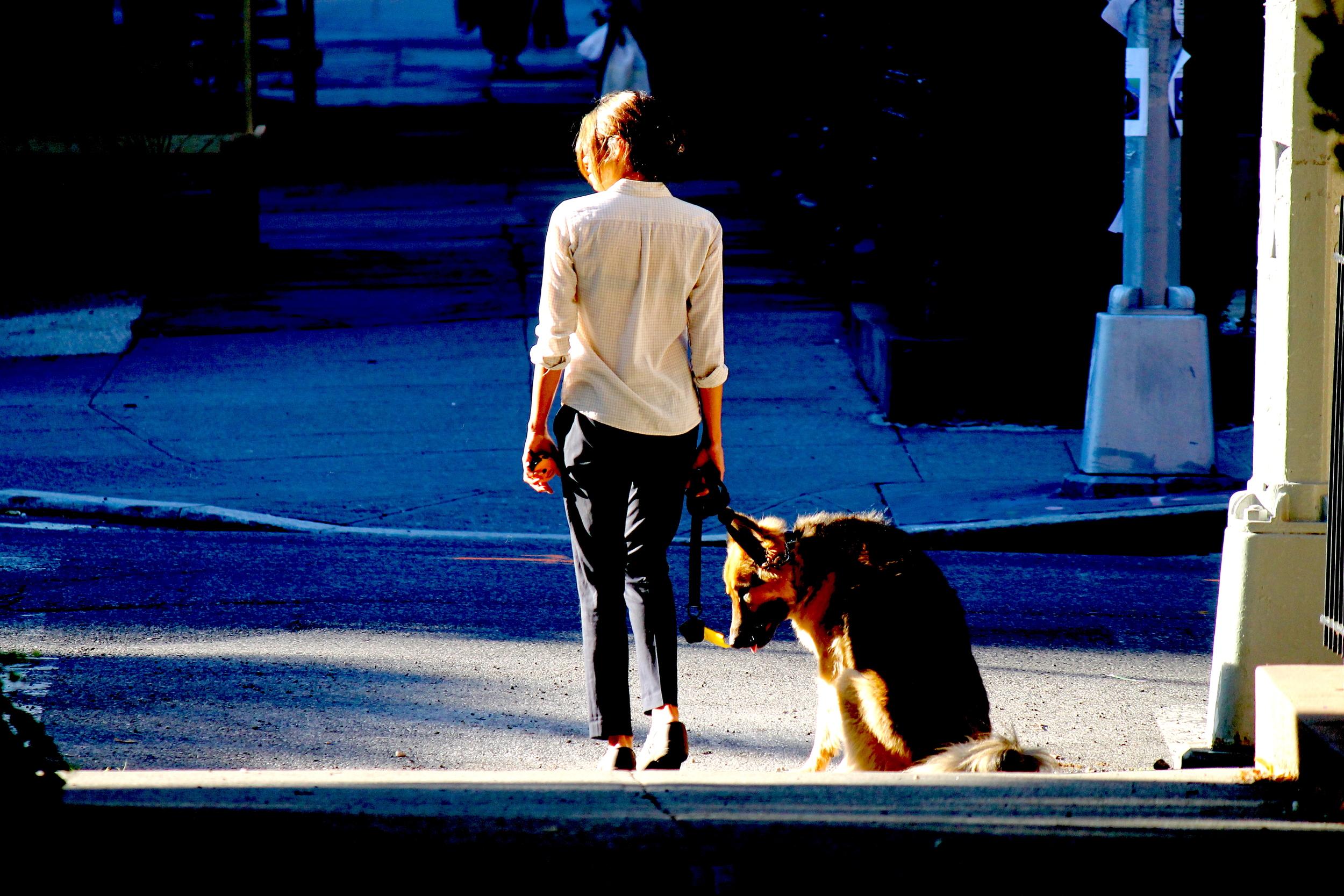 A Woman & A Dog (pt.1)