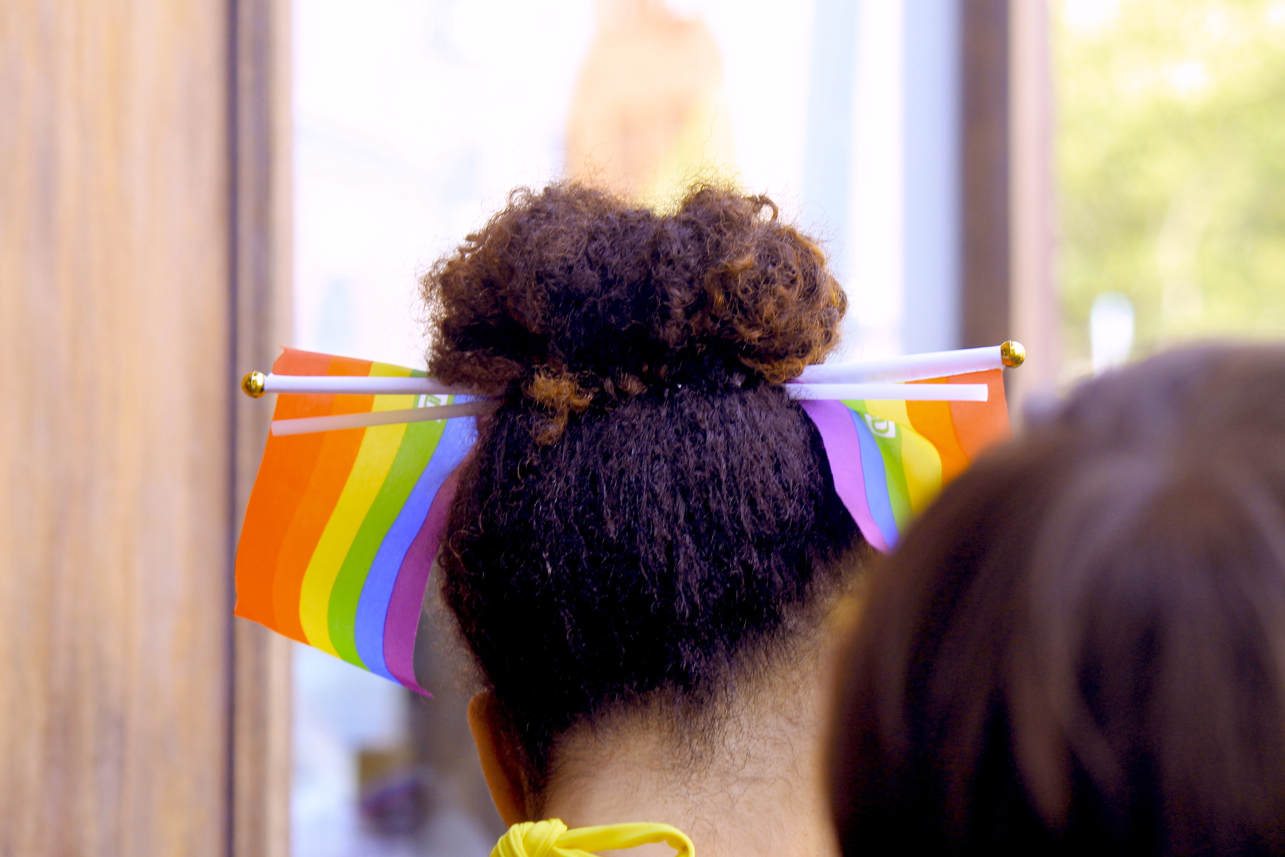 Pride Flags In Hair
