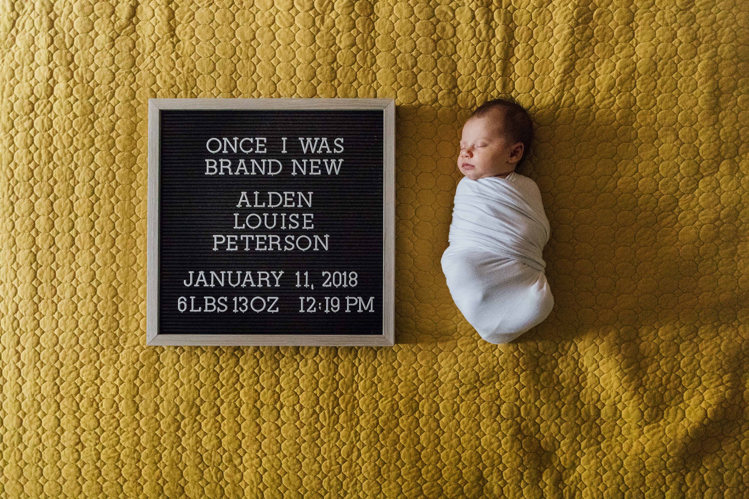 Alden Newborn-712.jpg
