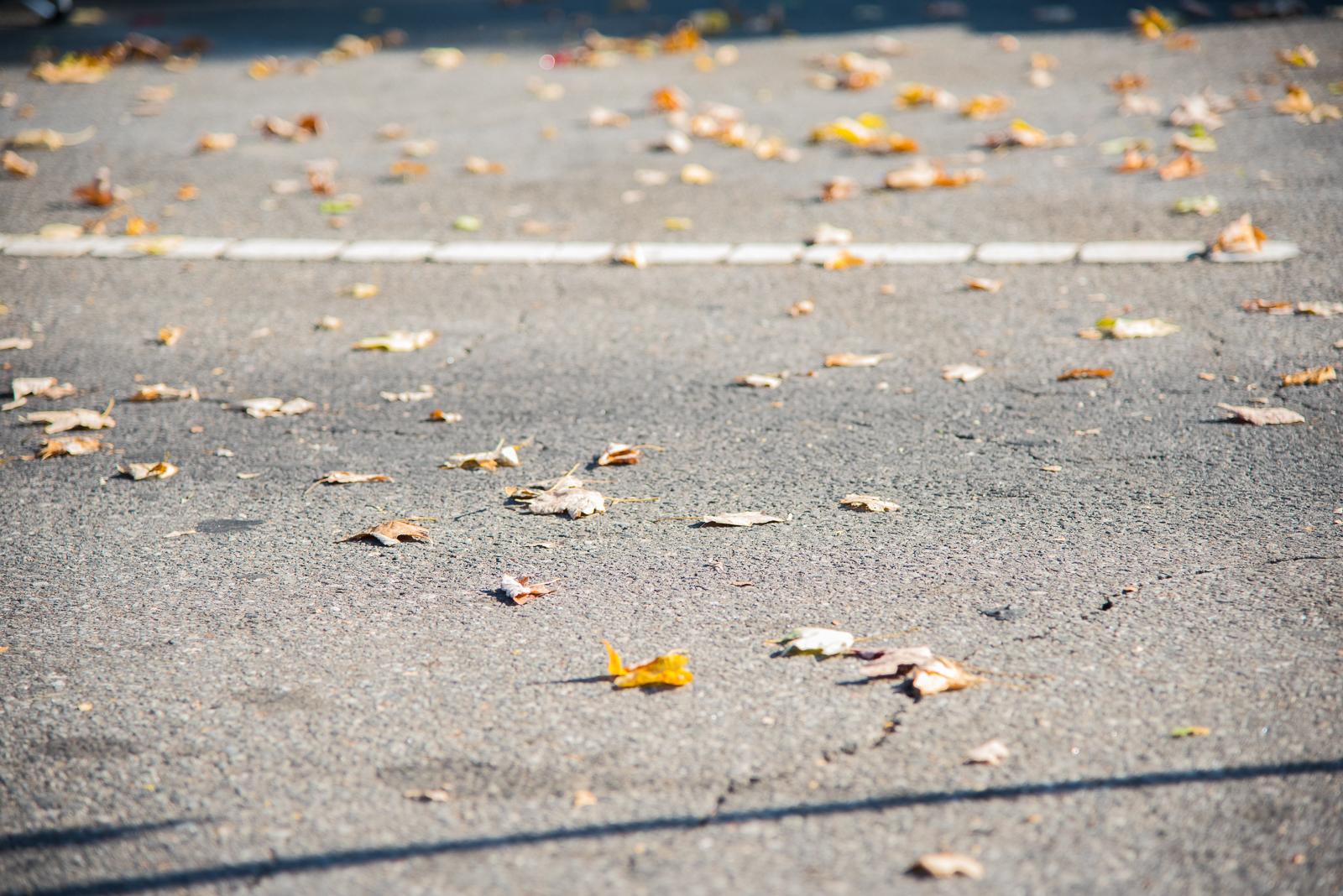 Boudoir-Photographer-Mt-Airy-NC-Seasons-Change.jpg