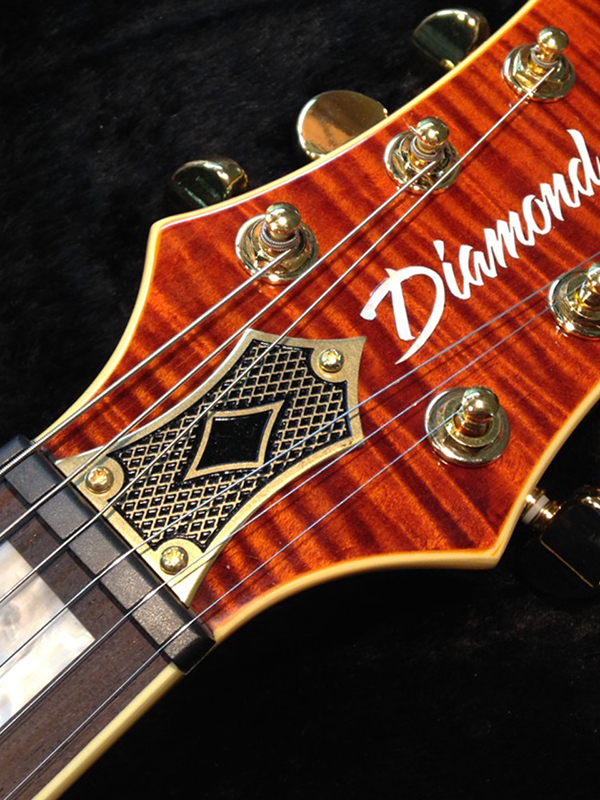truss rod cover - gold.jpg
