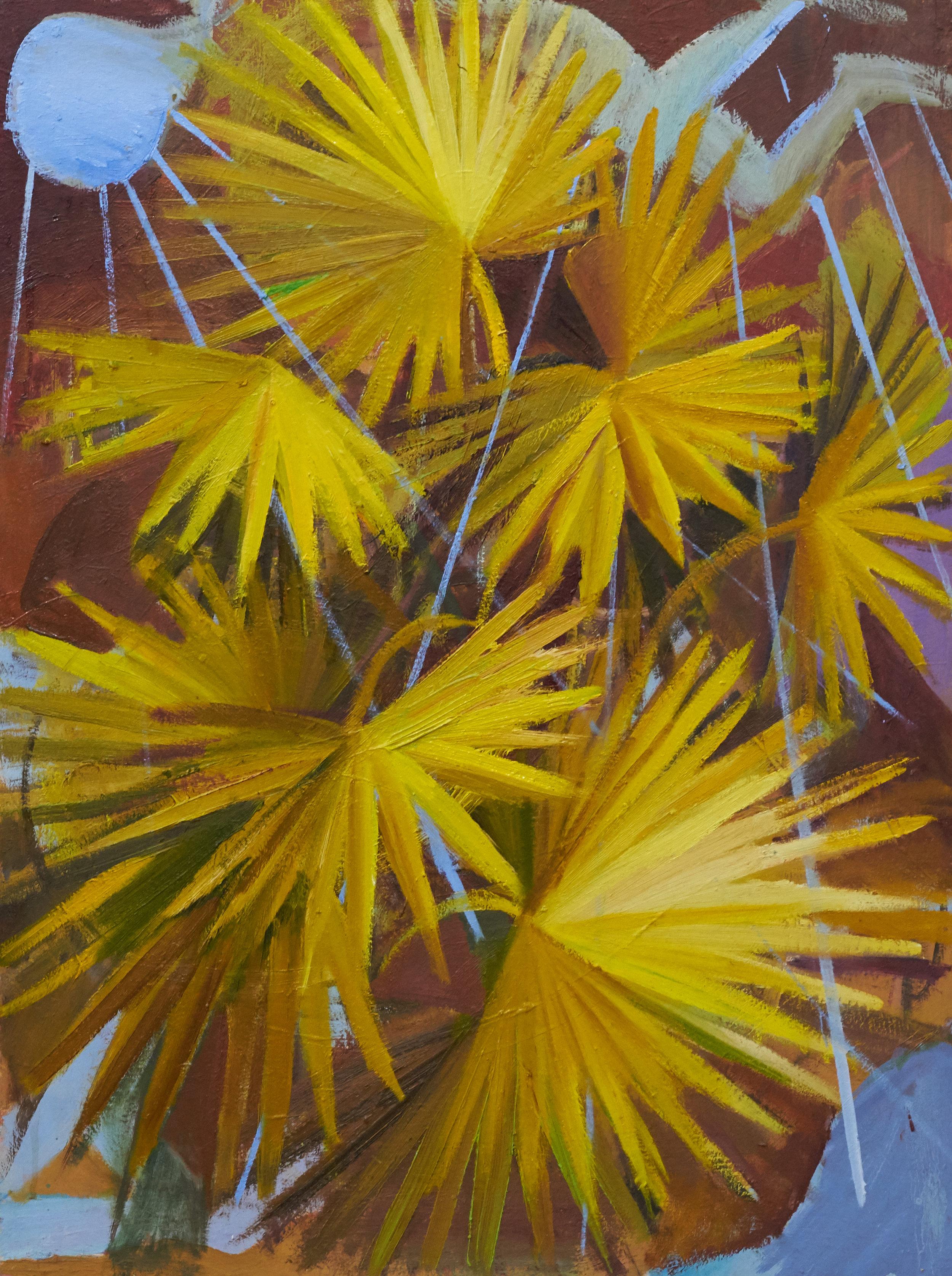 Rain Dance Palm