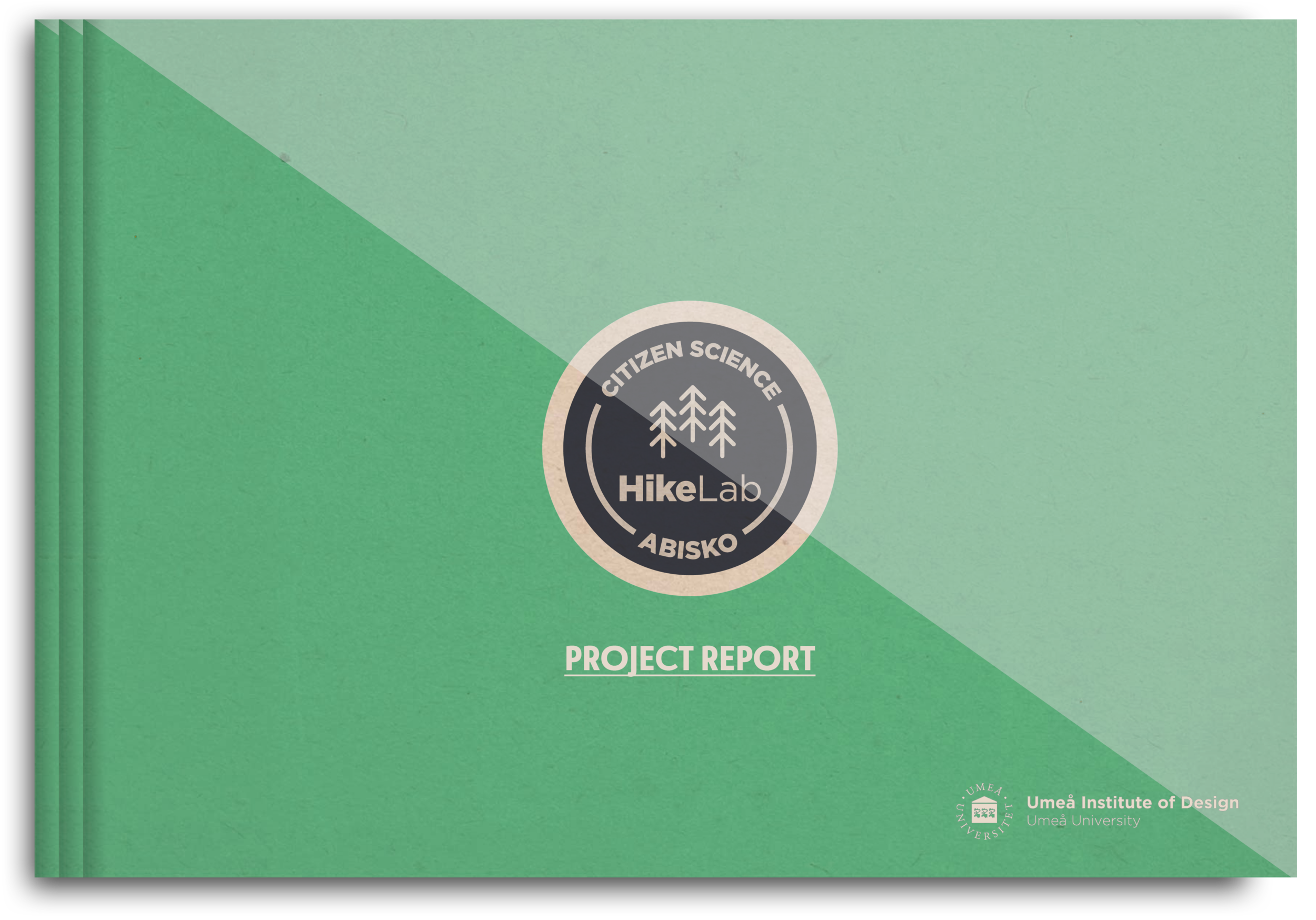 Download full Project Report
