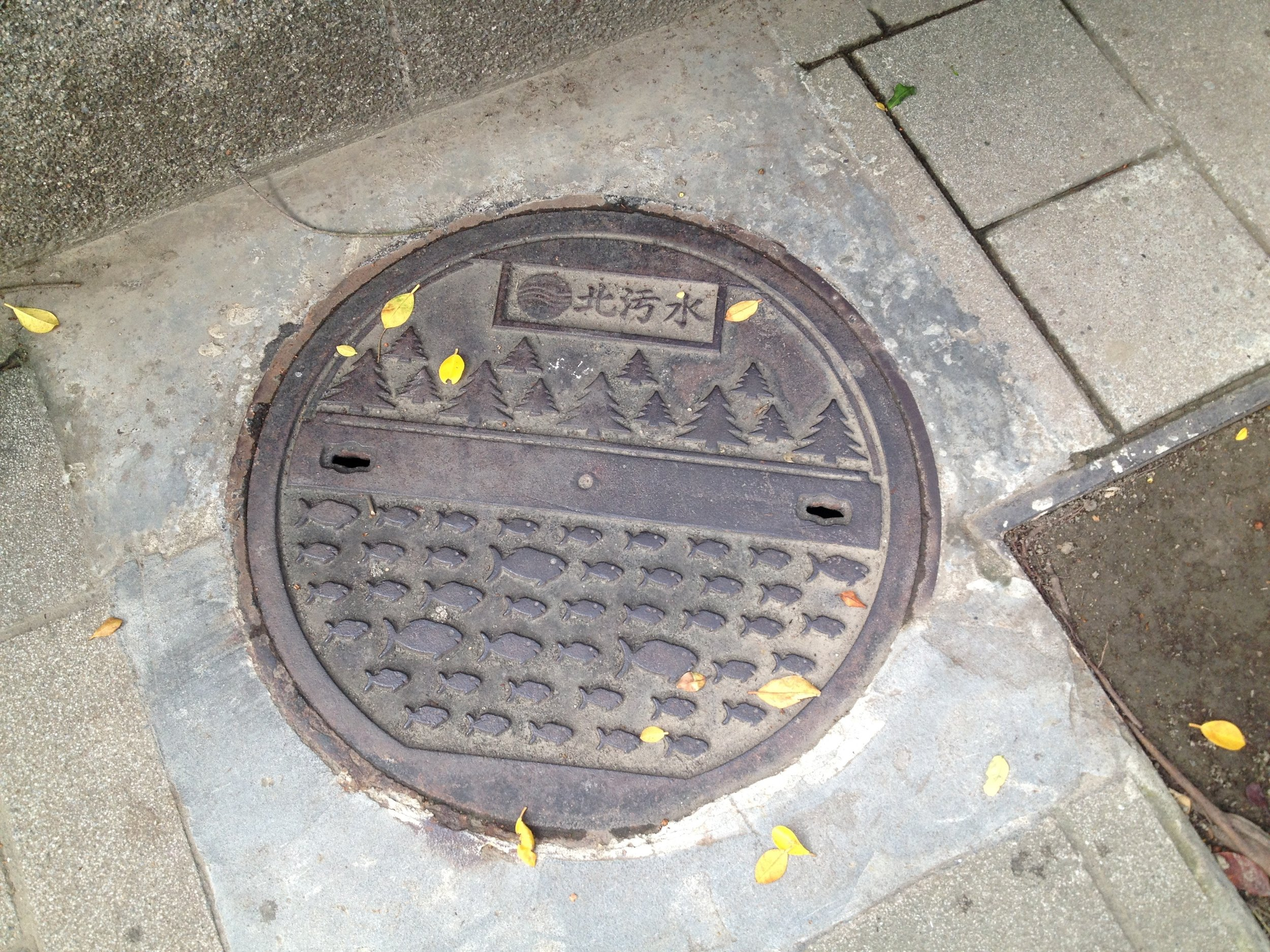 Manhole cover in Taipei, taken by Zara in 2014