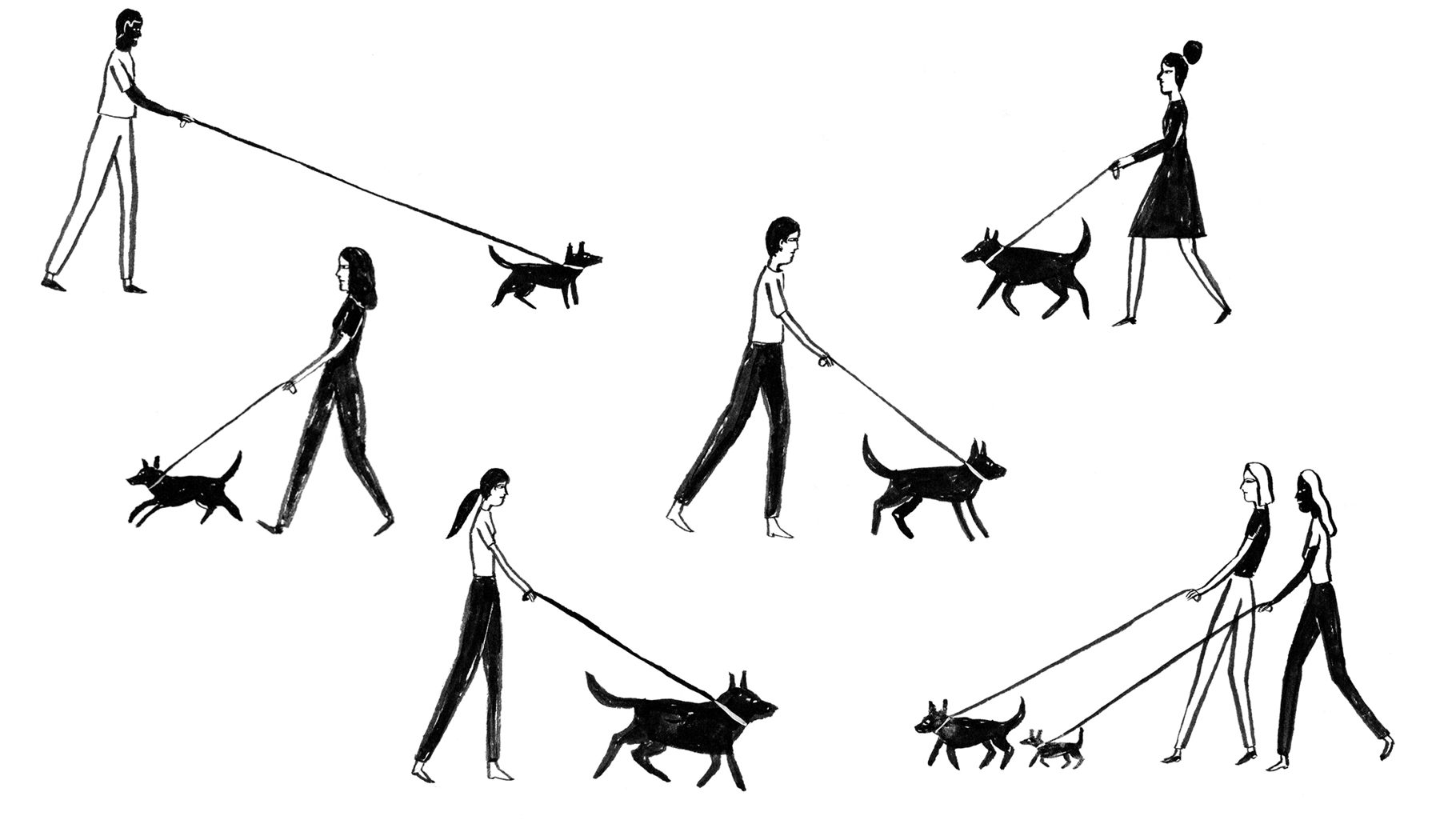 Dog Years drawing 4.jpg