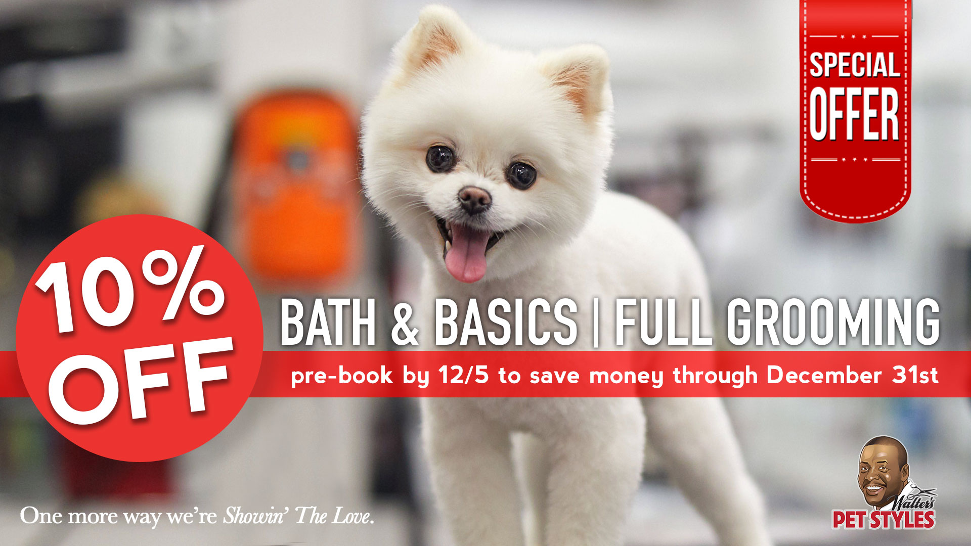 walters pet styles holiday special dog grooming.jpg