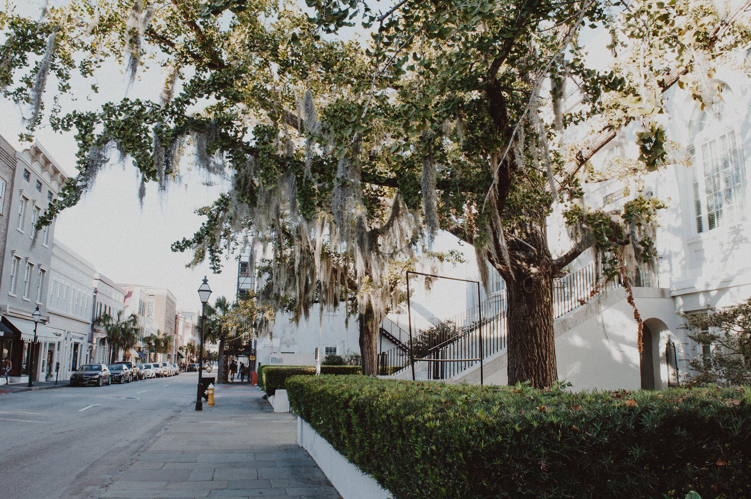 Charleston-35.jpg