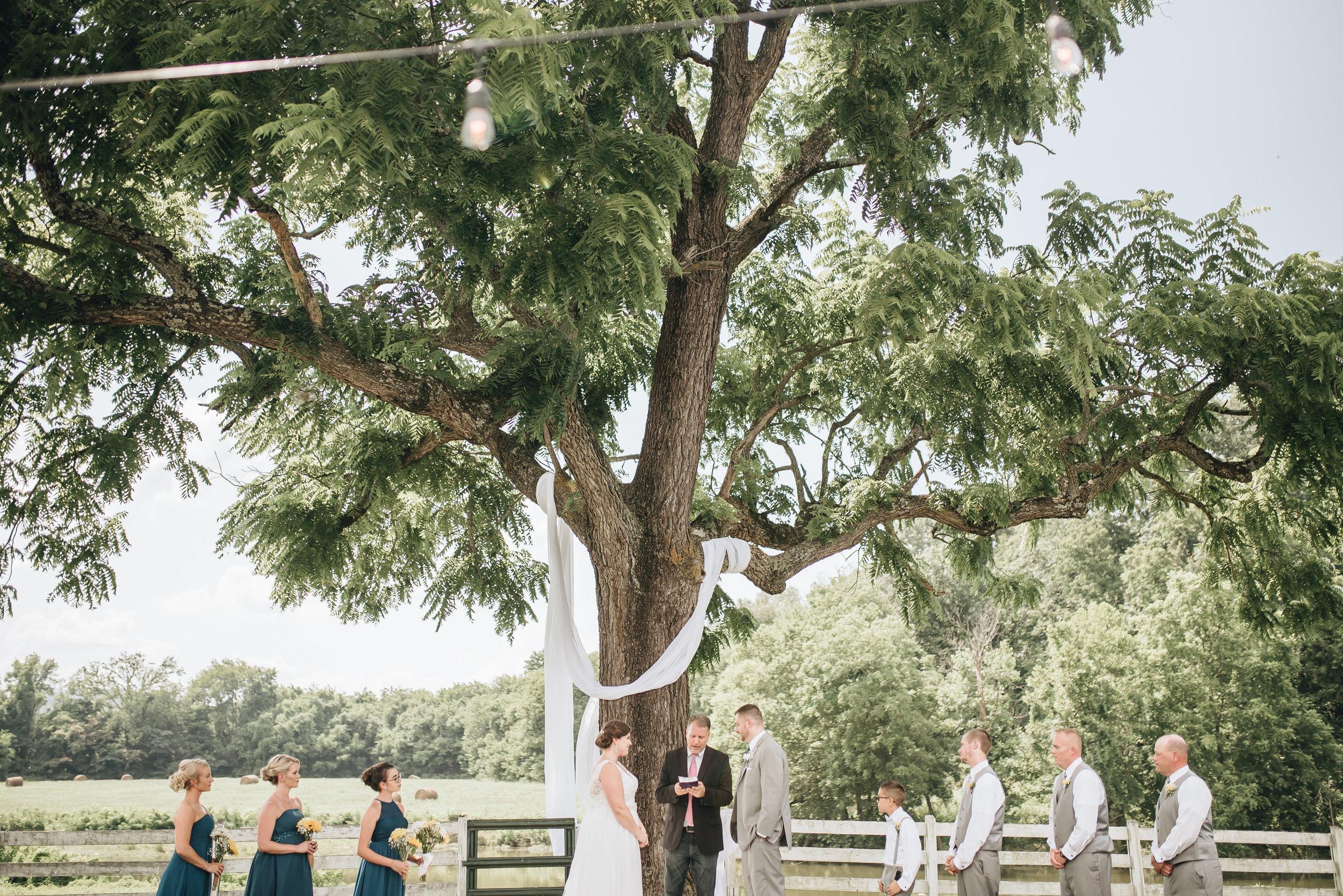 Cara and Shaun Wedding - EDITS-0198 - Copy.jpg