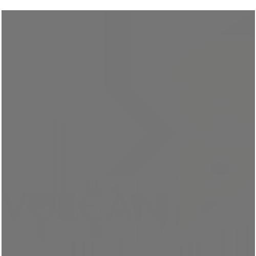 Vulcan.png
