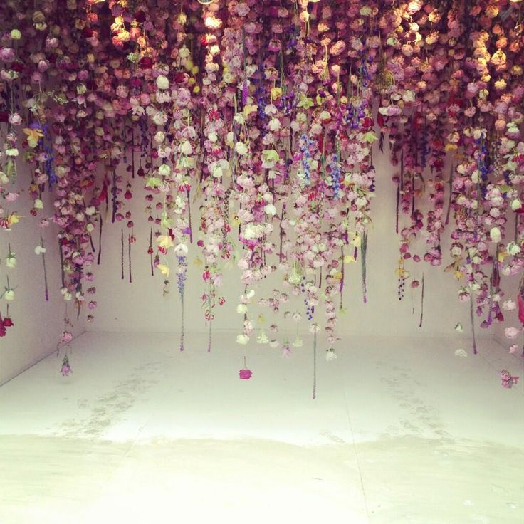 Wall of Flowers: Run -