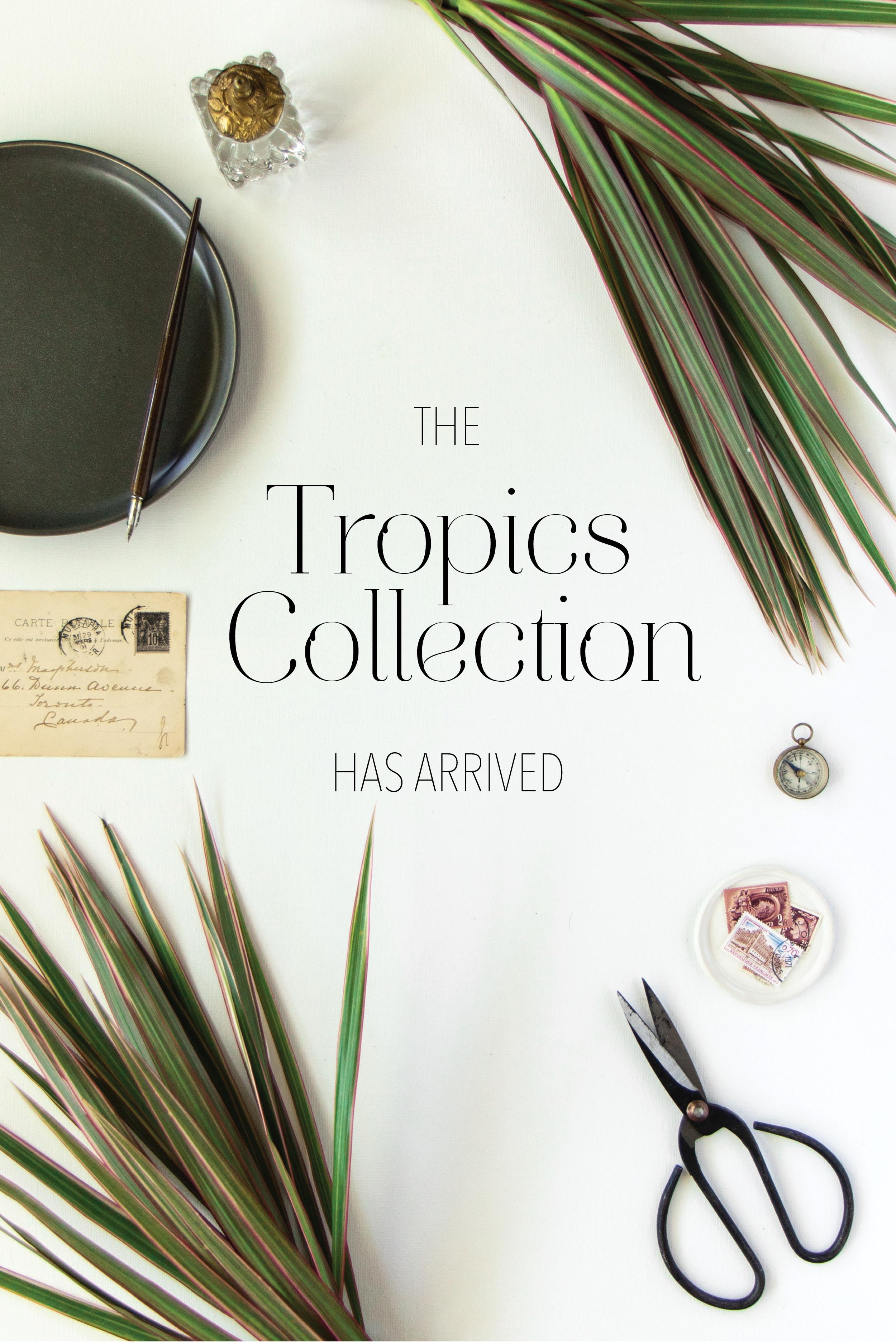 Tropics Announcement.jpg