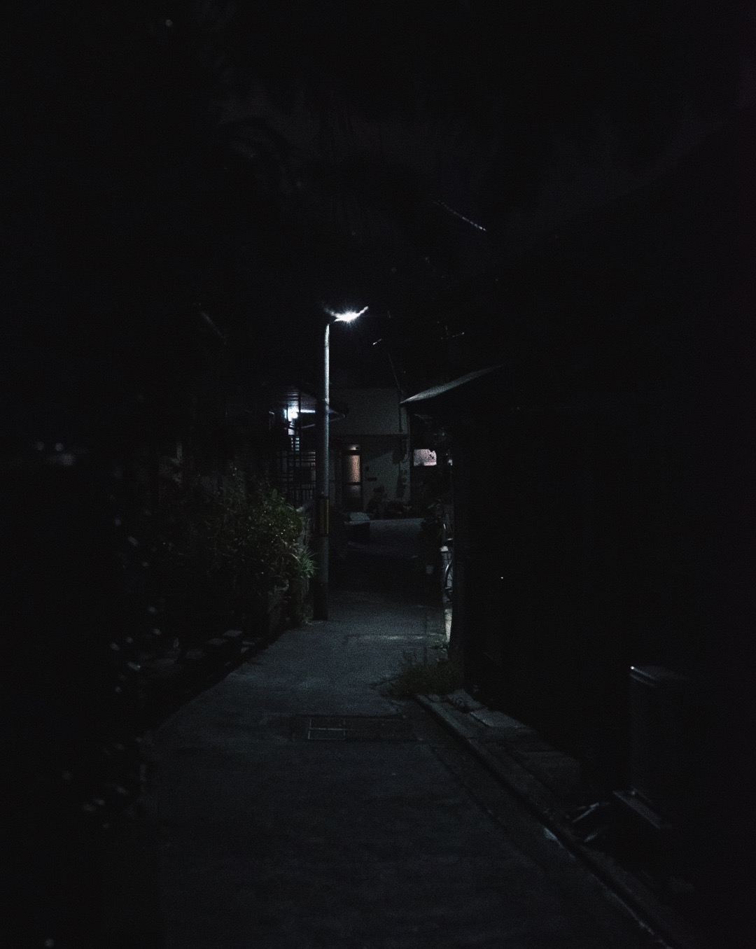 Photo 2017-11-18, 4 28 52 AM.jpg
