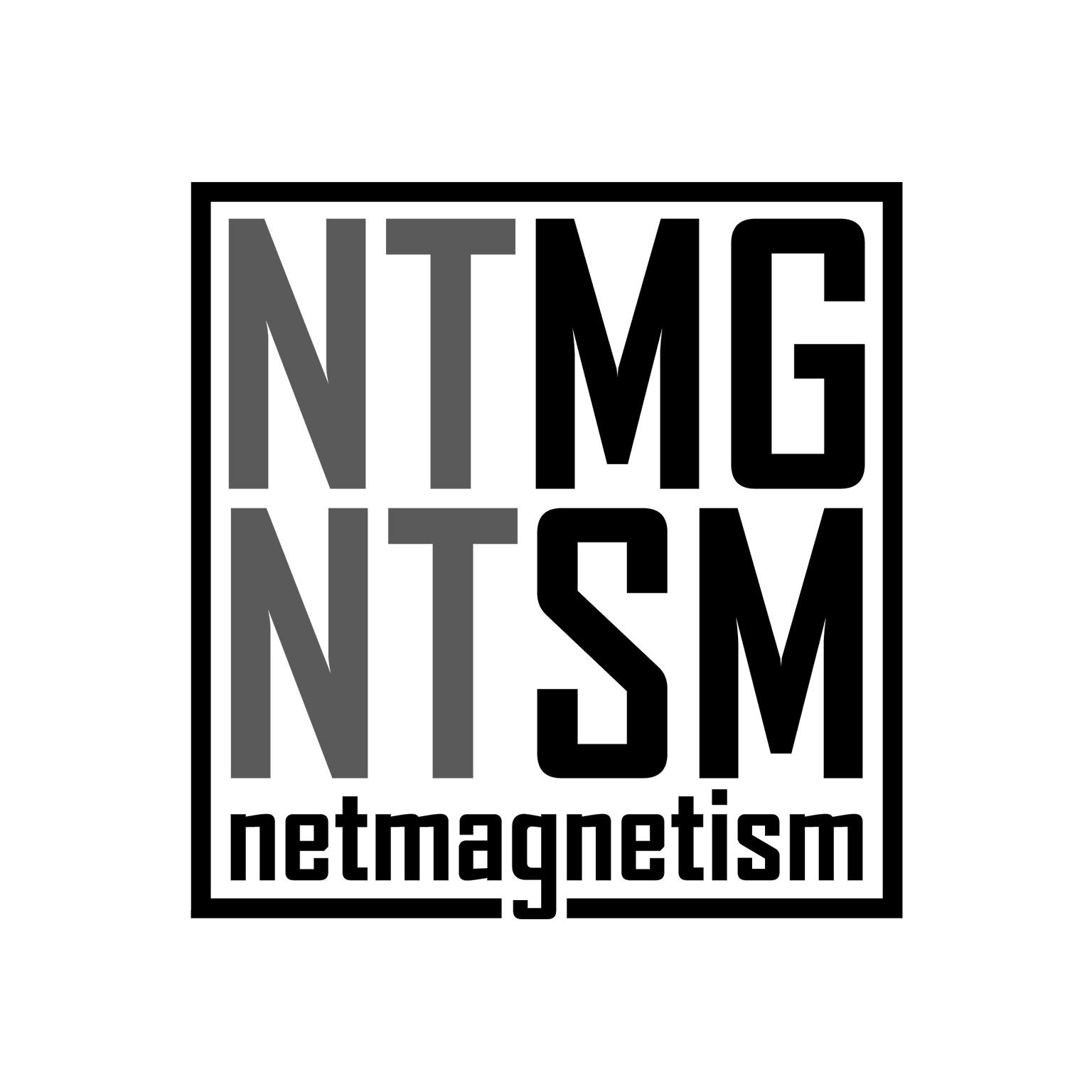 Netmagnetism.jpg