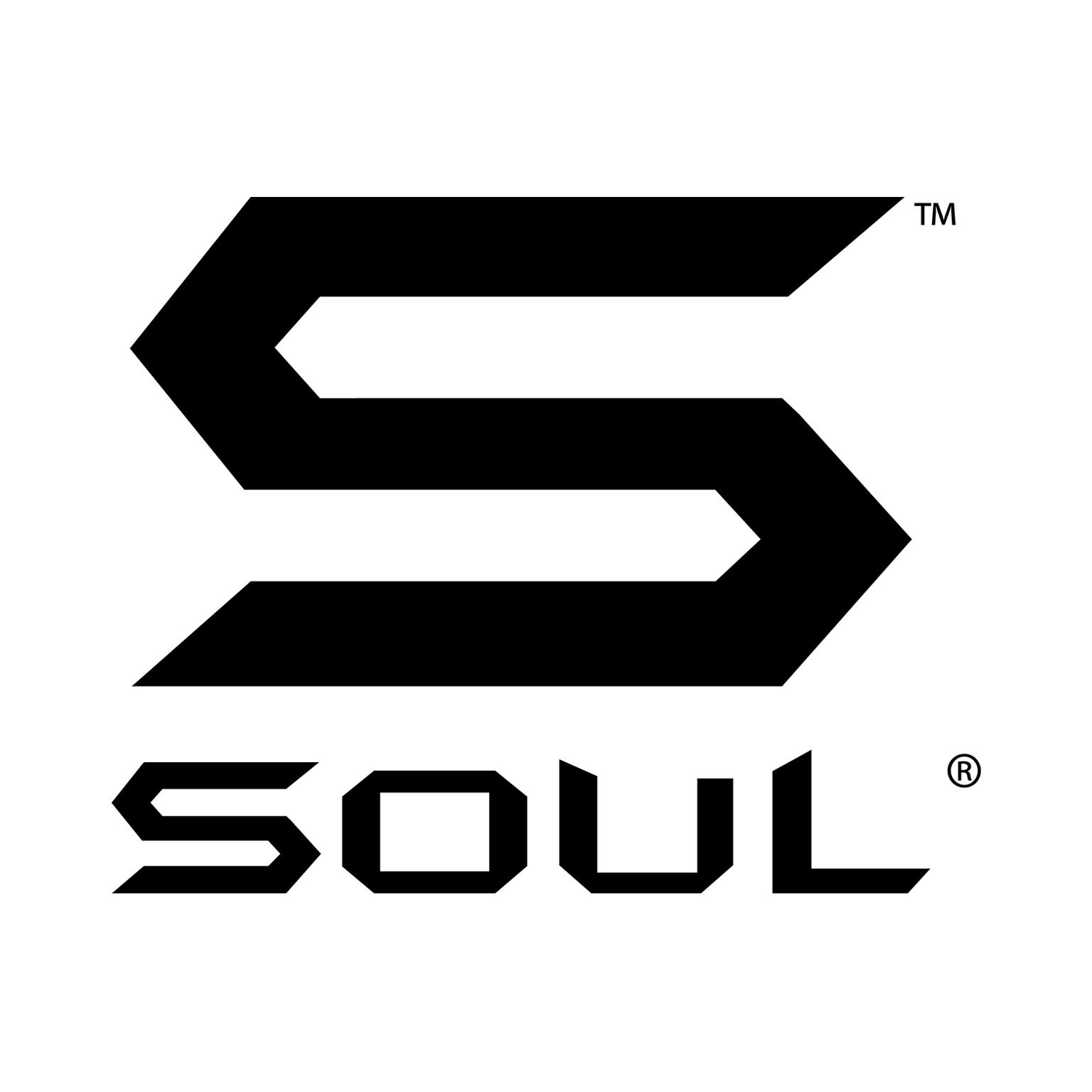 Soul Electronics.jpg