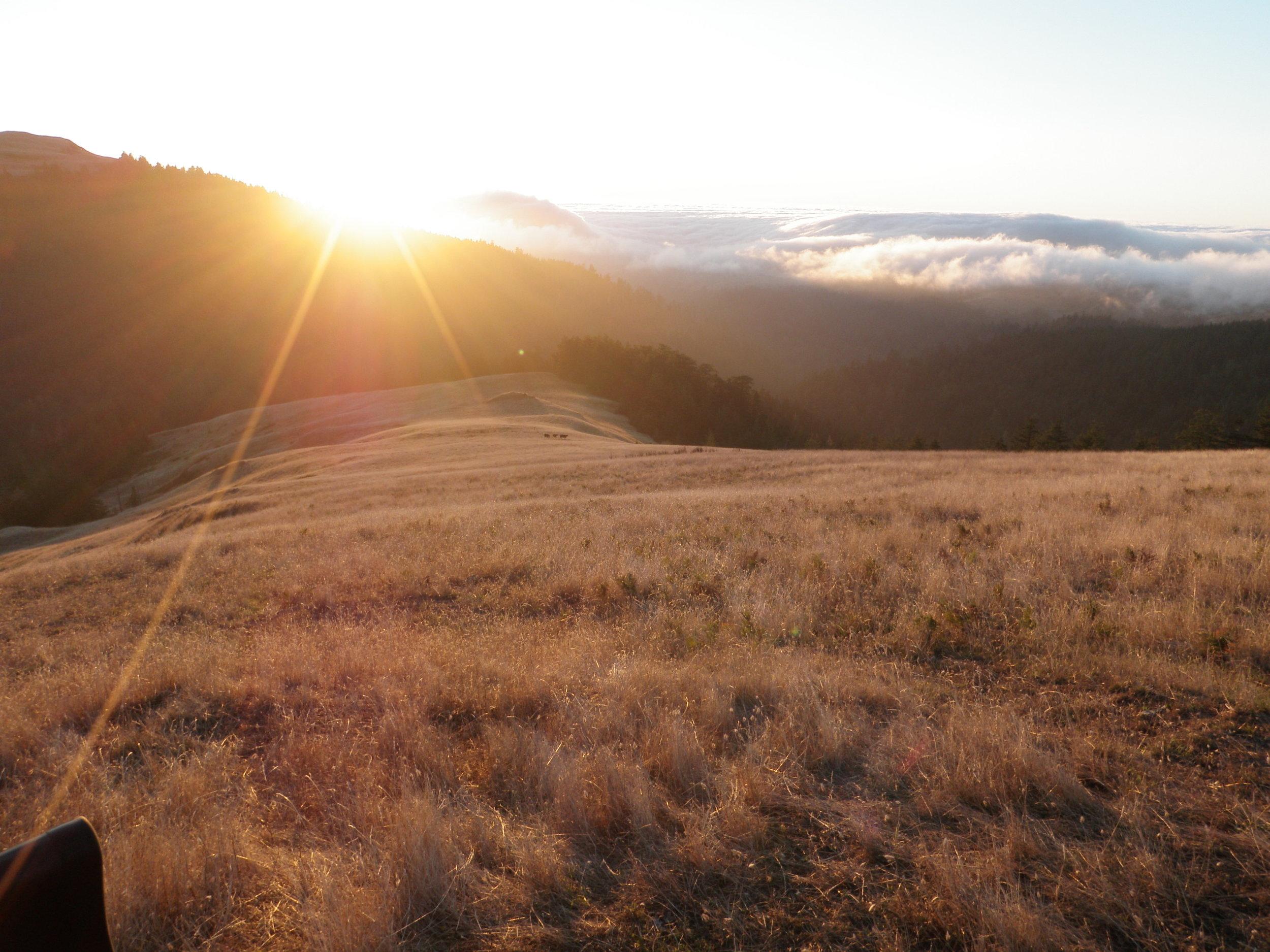 california roadway rehab | humboldt county, california | usa