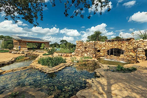 lady bird johnson wildflower center | austin, texas | usa