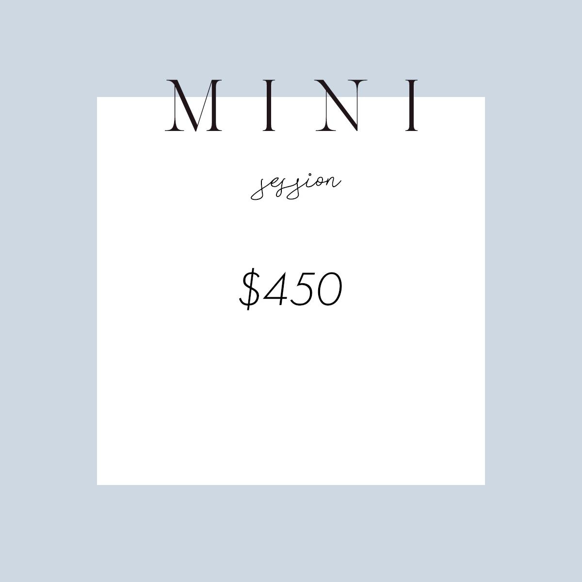 mini session price picture.jpg