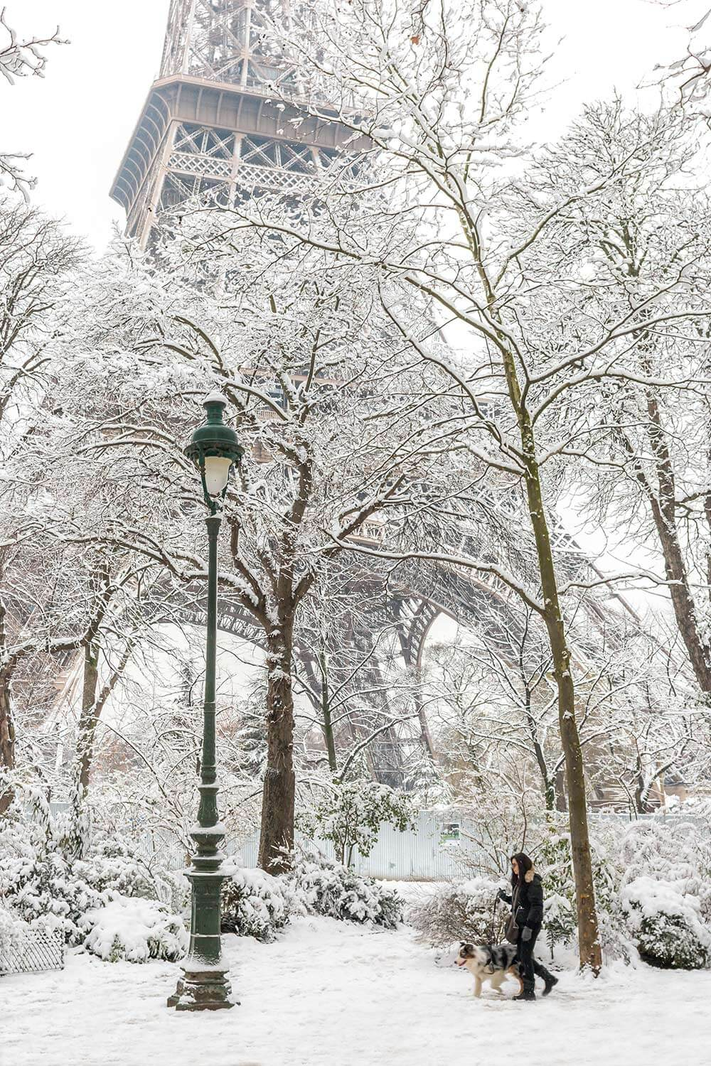 Paris Winter Cover.jpg