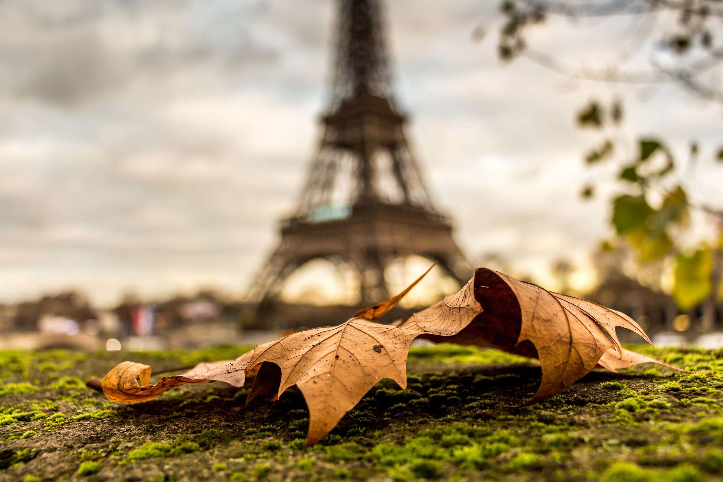 Autumn-in-Paris-4.jpg