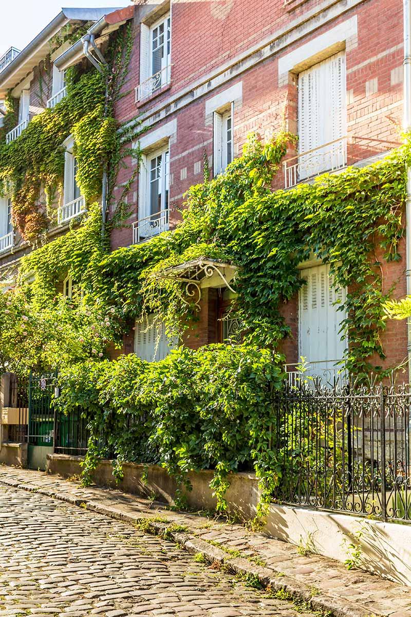 Winter-in-Paris-9.jpg