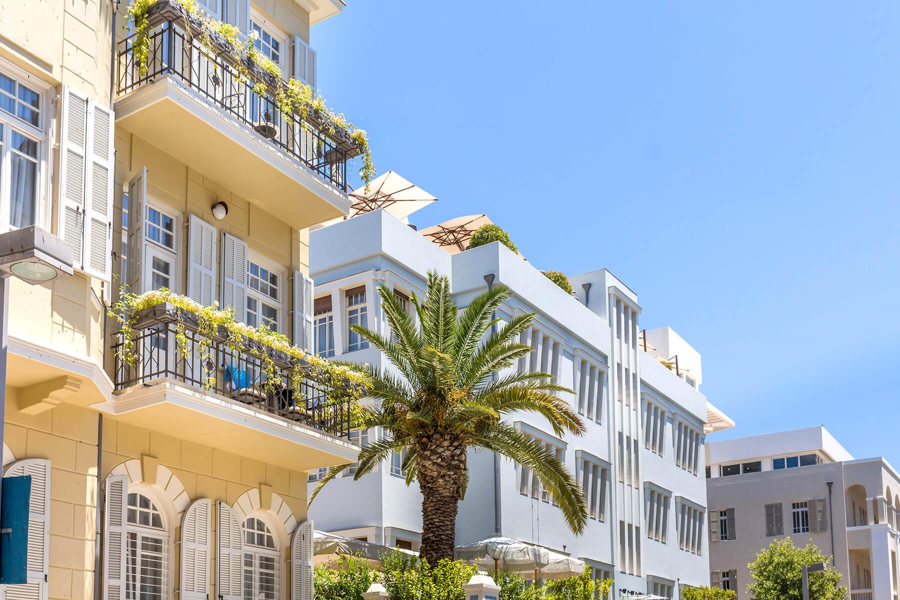 Norman-Tel-Aviv-1.jpg