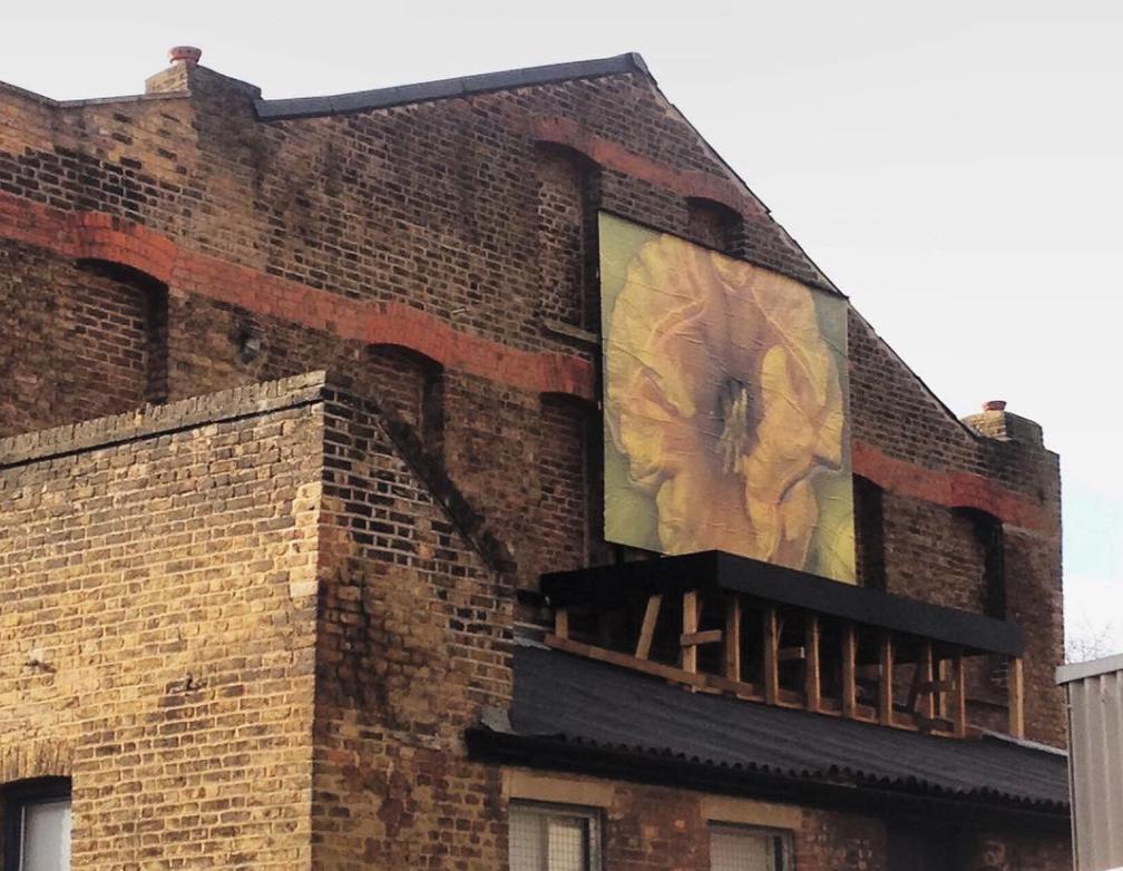 'Ripe' , Kingsgate Project, London 2017