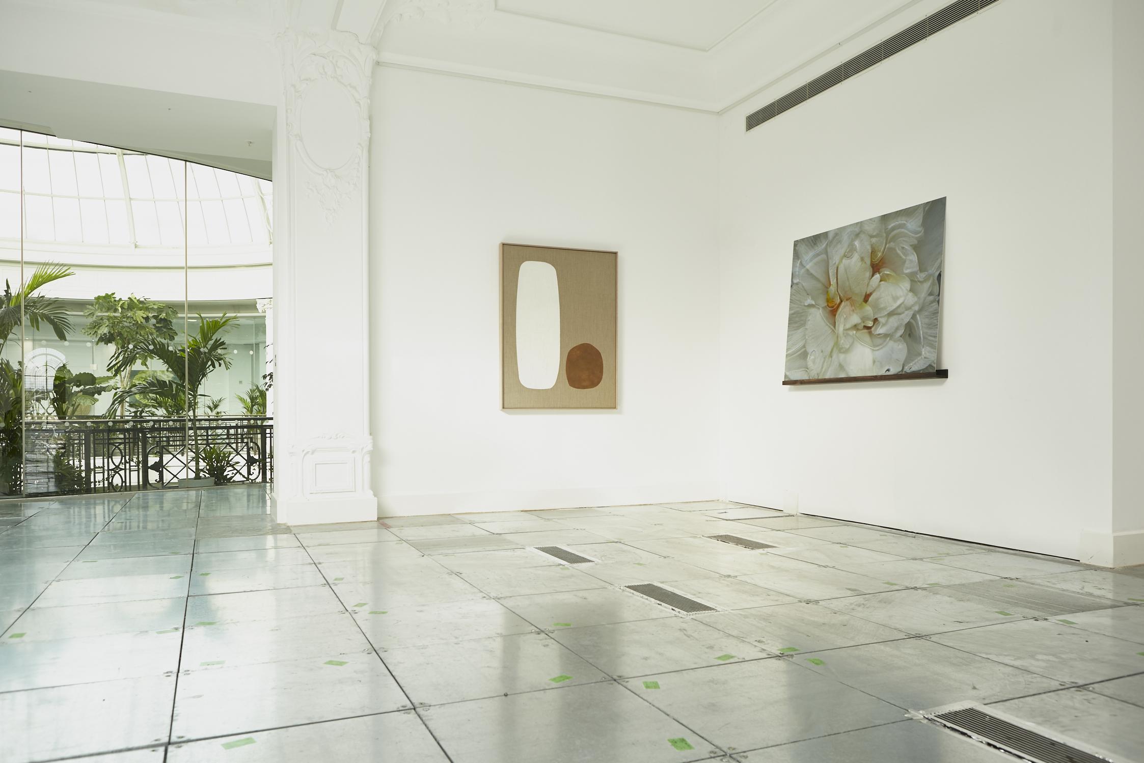 anna-skladmann-2018_2_20_openspace_gallery_grace_exhibtion__MG_0105+1.jpg