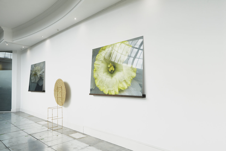anna-skladmann-2018_2_20_openspace_gallery_grace_exhibtion__MG_0374.jpg