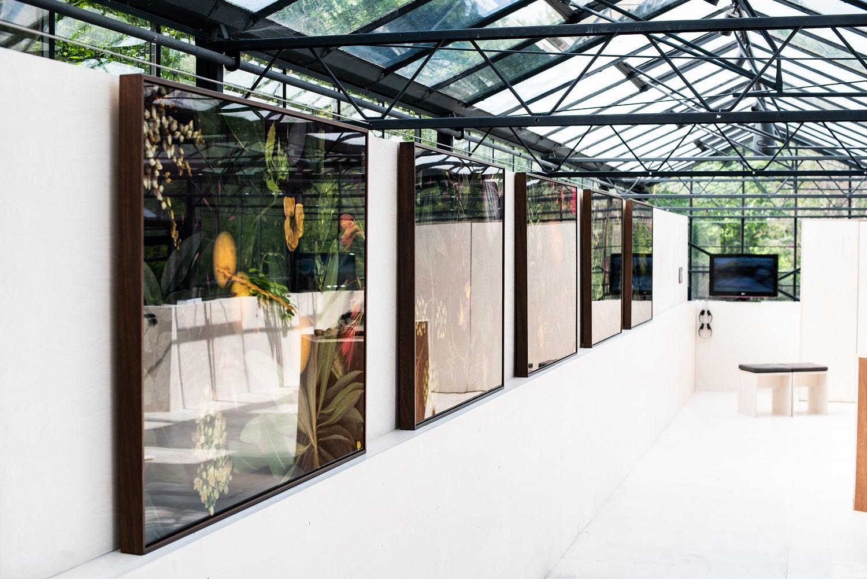 'Rewind/Rewild ', Omved Gardens, London 2019