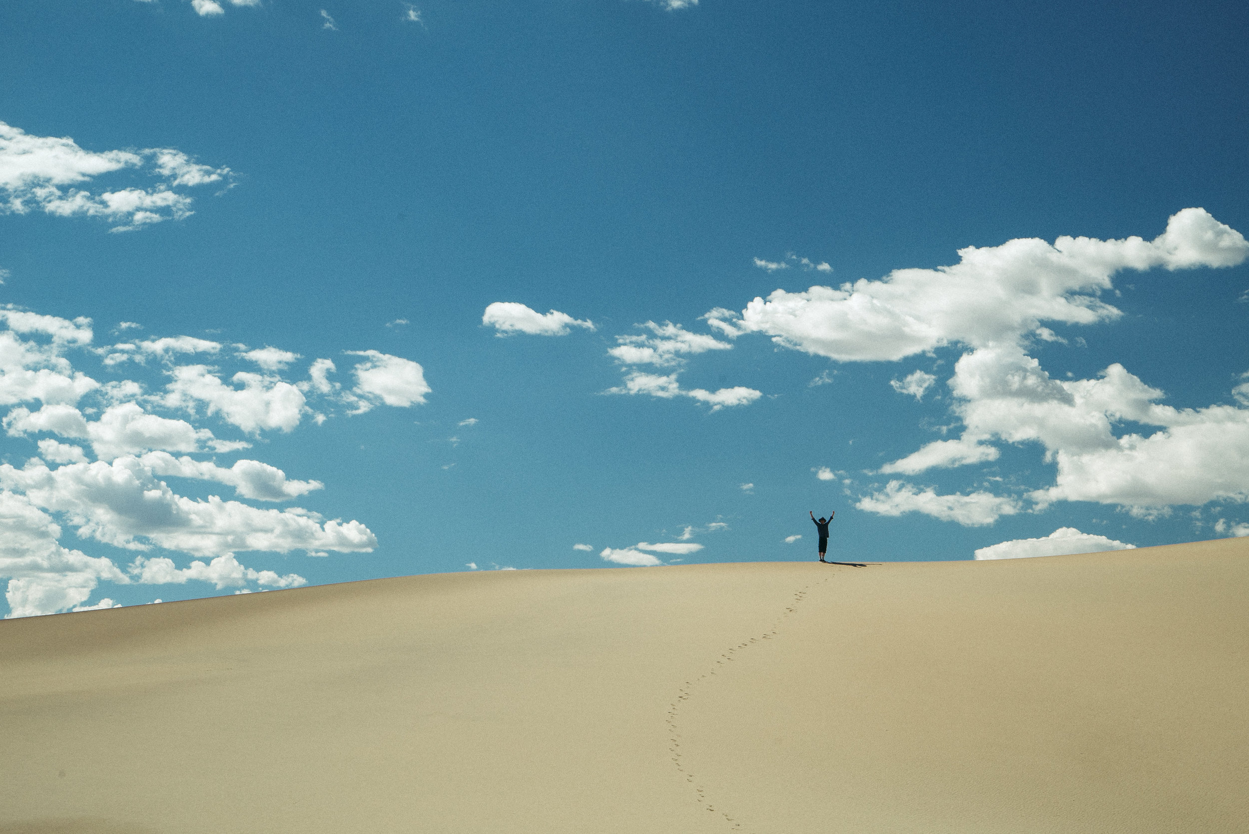 dunes - longtracks-LIGHTclean.jpg