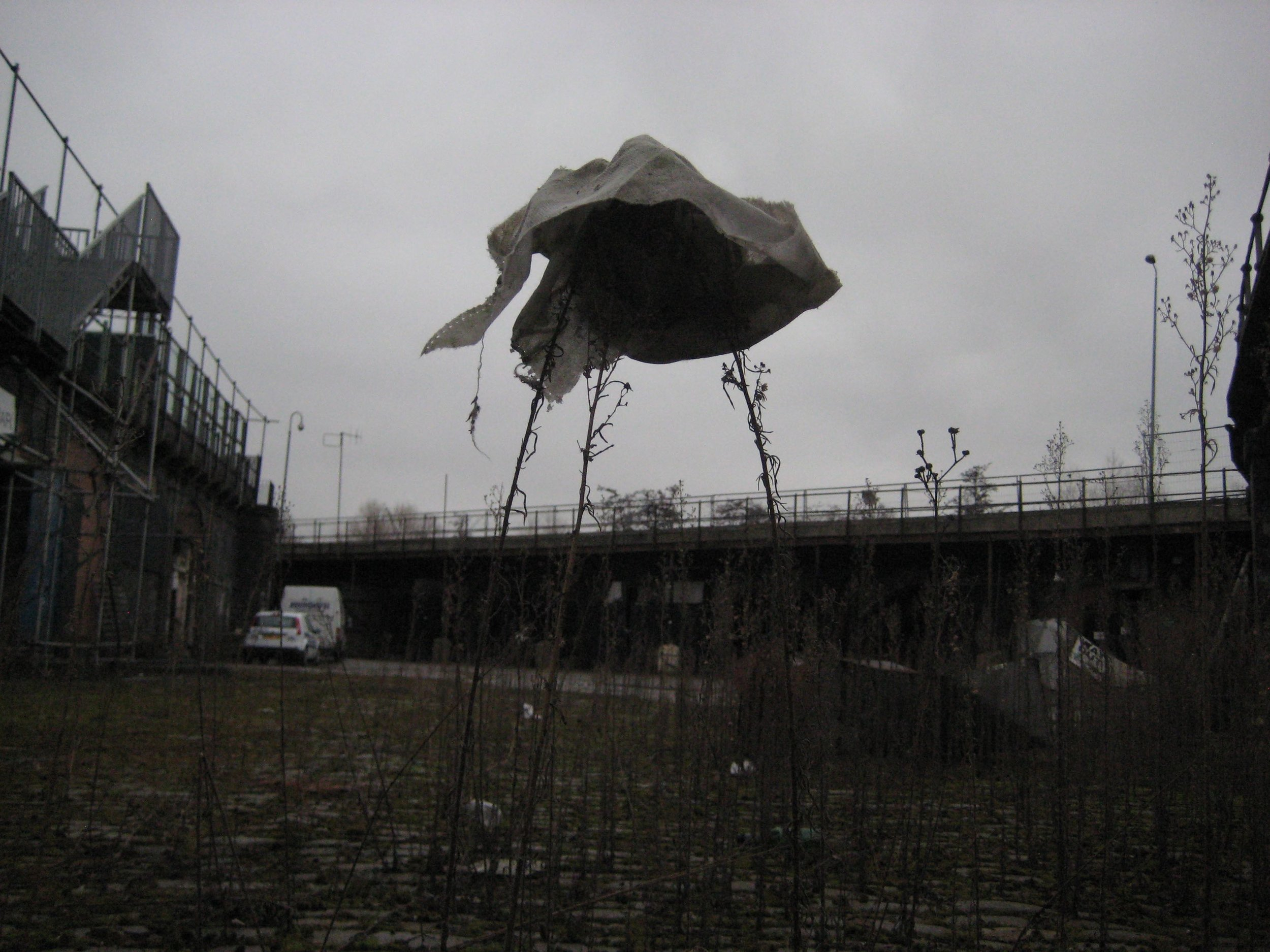 LV Untitled (fabric and weeds).jpg