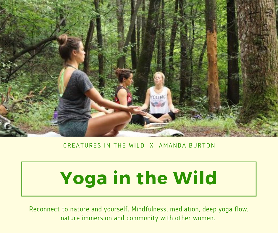 yogainthewild.png