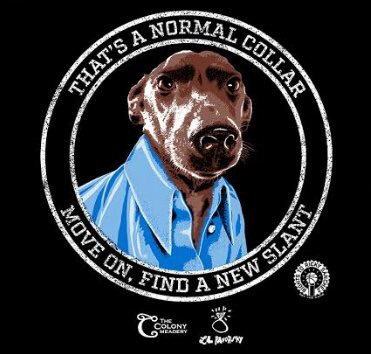 Rebel Collar.jpg