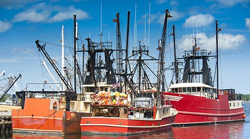 commercial_fishing_tax_cpa.jpg
