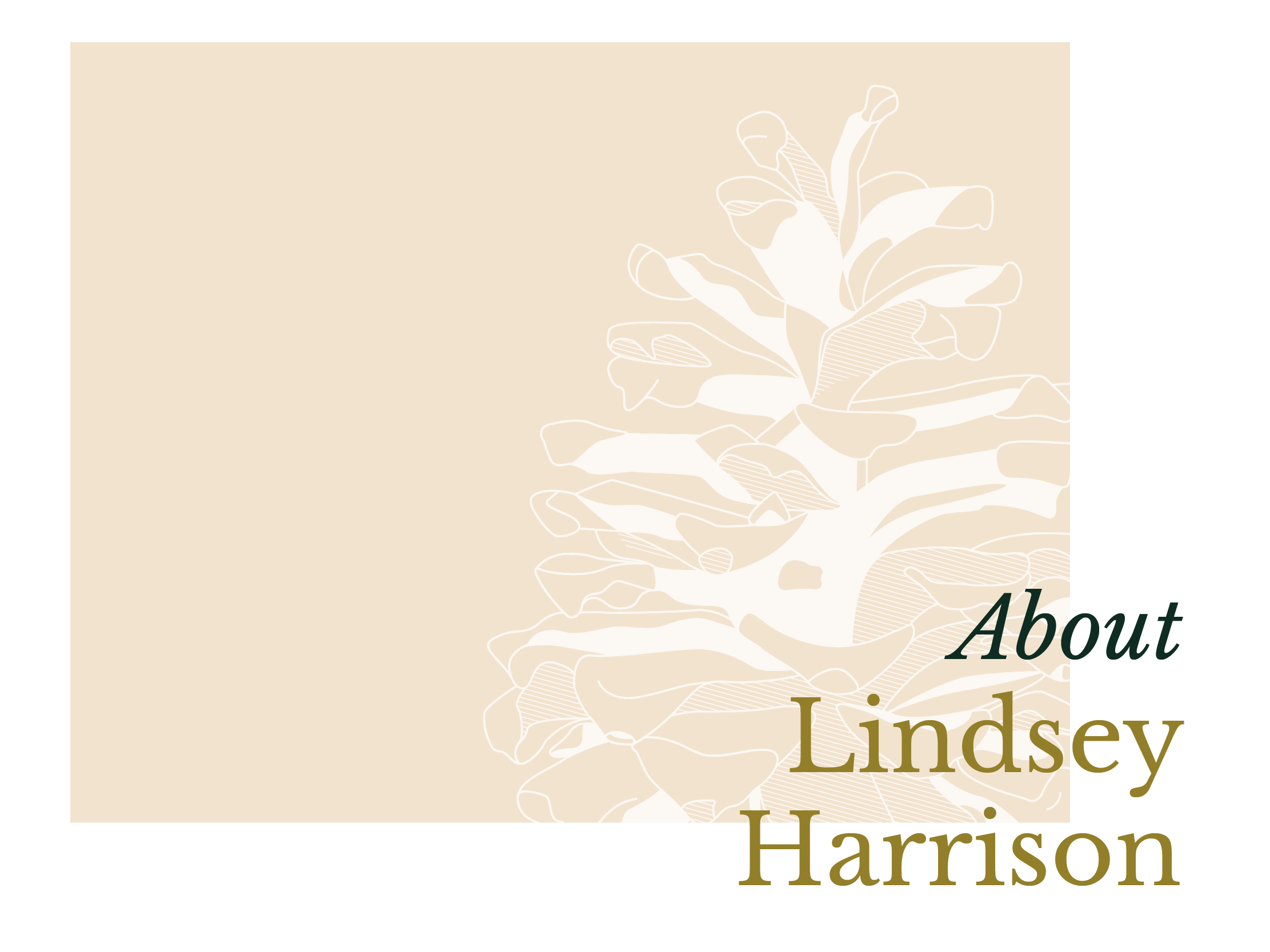 The Simple Act of Attending Daily Mass - Letter from Lindsey Harrison