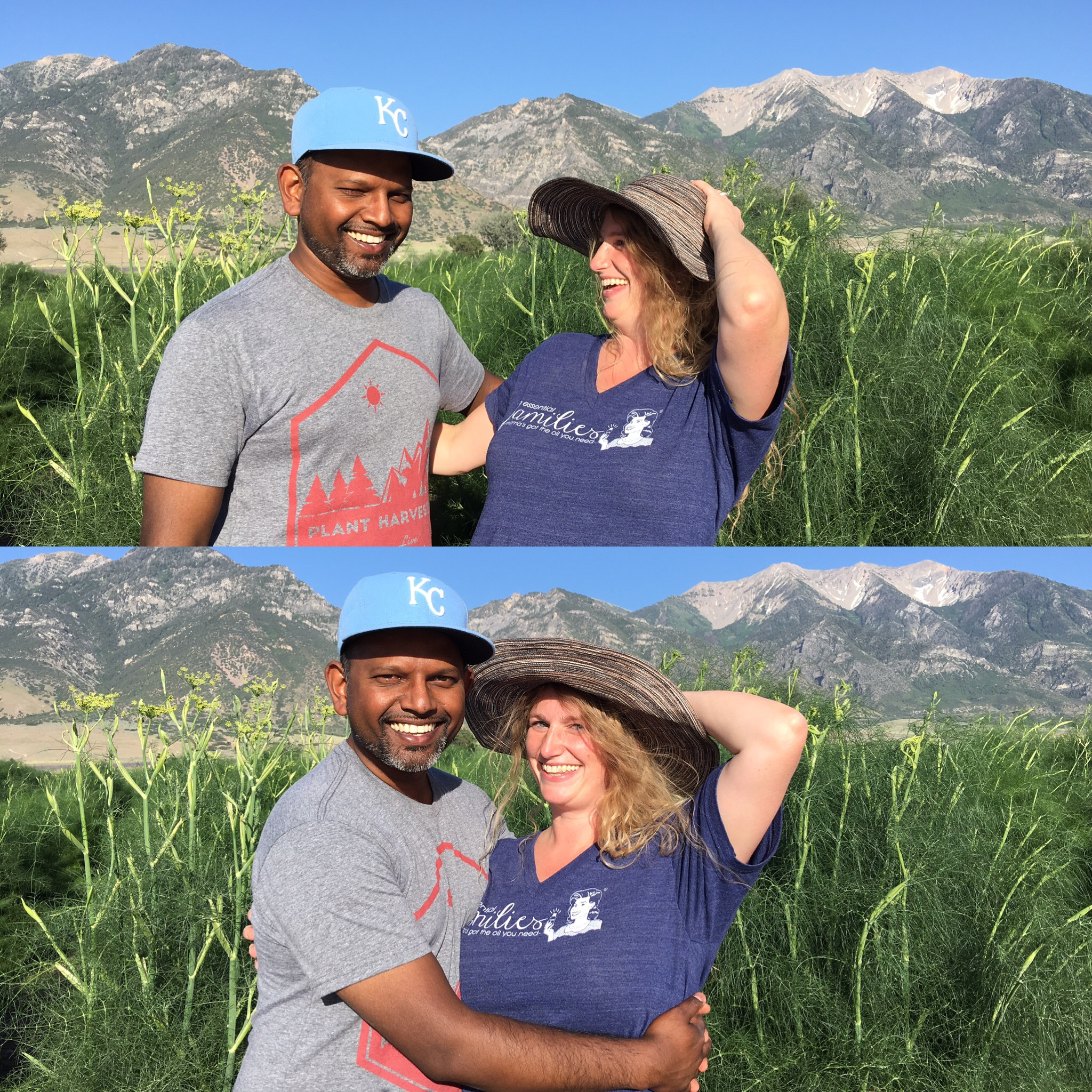 Visiting a Young Living fennel field in Utah