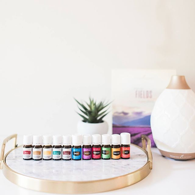 I am freaking out over here! See those beauties there? And that gorgeous Desert Mist diffuser (scroll to see Dew Drop)? You can get allll that (11 everyday essential oils) + enough Thieves household cleaner to make a full spray bottle + 2 packets of the antioxidant wolfberry juice, Ningxia Red + access to our private oily community where we teach you allllll the things for $144! (Plus $25 back!) Young Living hasn't had a kit sale for two years, so this is a ✨big deal✨! I am so excited about this opportunity to play a part in YOUR wellness journey that I'll throw in $25 cash back because I believe in these products so much. They have changed my life and I want to get them into your hands, friends! Link with instructions in profile! DM me with all your questions and your PayPal or Venmo info so I can get your $25 to you! 👊🏻 All are welcome! Can't wait to have you! 💖. . . . . . #starterkitdeal #starterkitsale #premiumstarterkit #premiumstarterkitdeal #premiumstarterkitsale #younglivingessentialoils #essentialoils #essentialoilsale #takecarebegood #juststart #wellnessjourney #hashiwarrior #autoimmunewarrior #hashimotos #glutenfreelife #roadtowellness #wellnessjourney #naturalwellness #nosynthetics #diffusers #thievescleaner #ningxiared