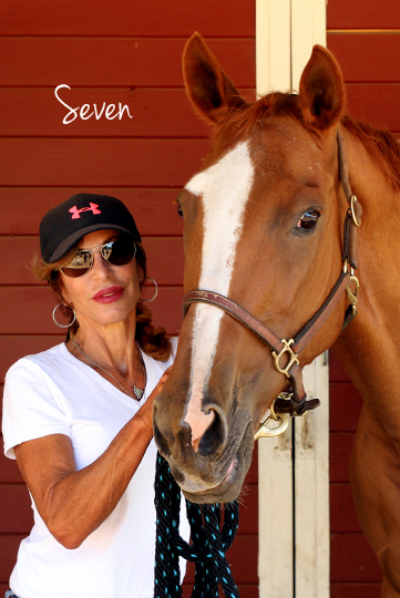 Seven is my redheaded (ex) racehorse mare with enough fire and flame to challenge anyone's game. Although Seven was winning on the racetrack when we met, it was obvious that she was experiencing an emotional breakdown from the extreme amount of physical and mental stress that goes along with the racing industry. Seven, previously known as Laundering Money and a granddaughter of Secretariat is now in a safe place that she can call her forever home.