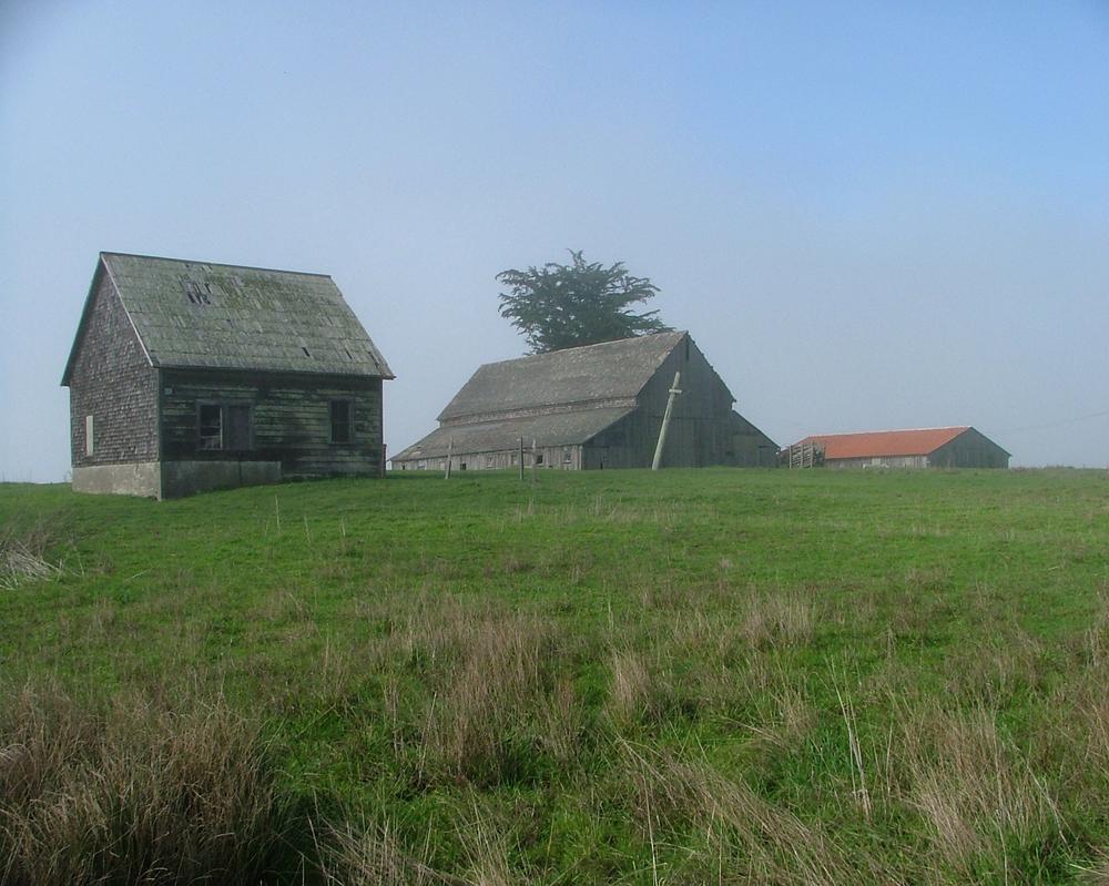 Spring-Ranch-Barns-(15).jpg