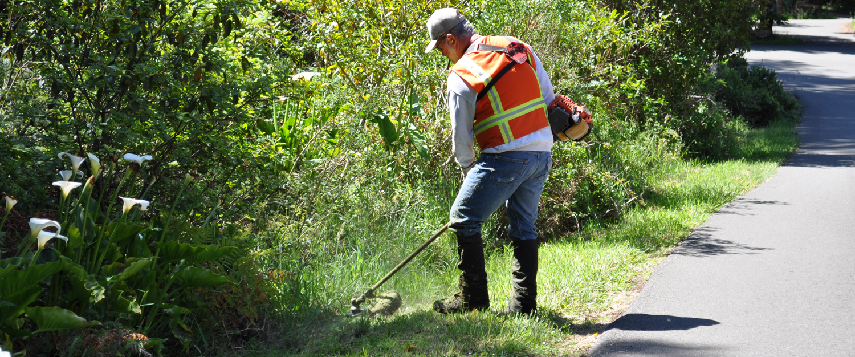 Volunteer-Photos---Fred-Andrews-017.jpg