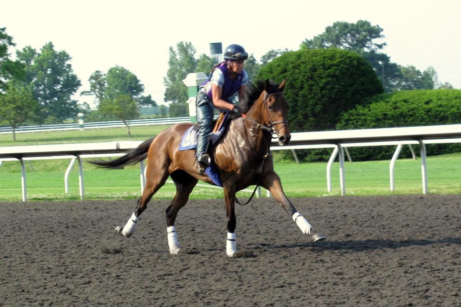 horse-running-1.jpg