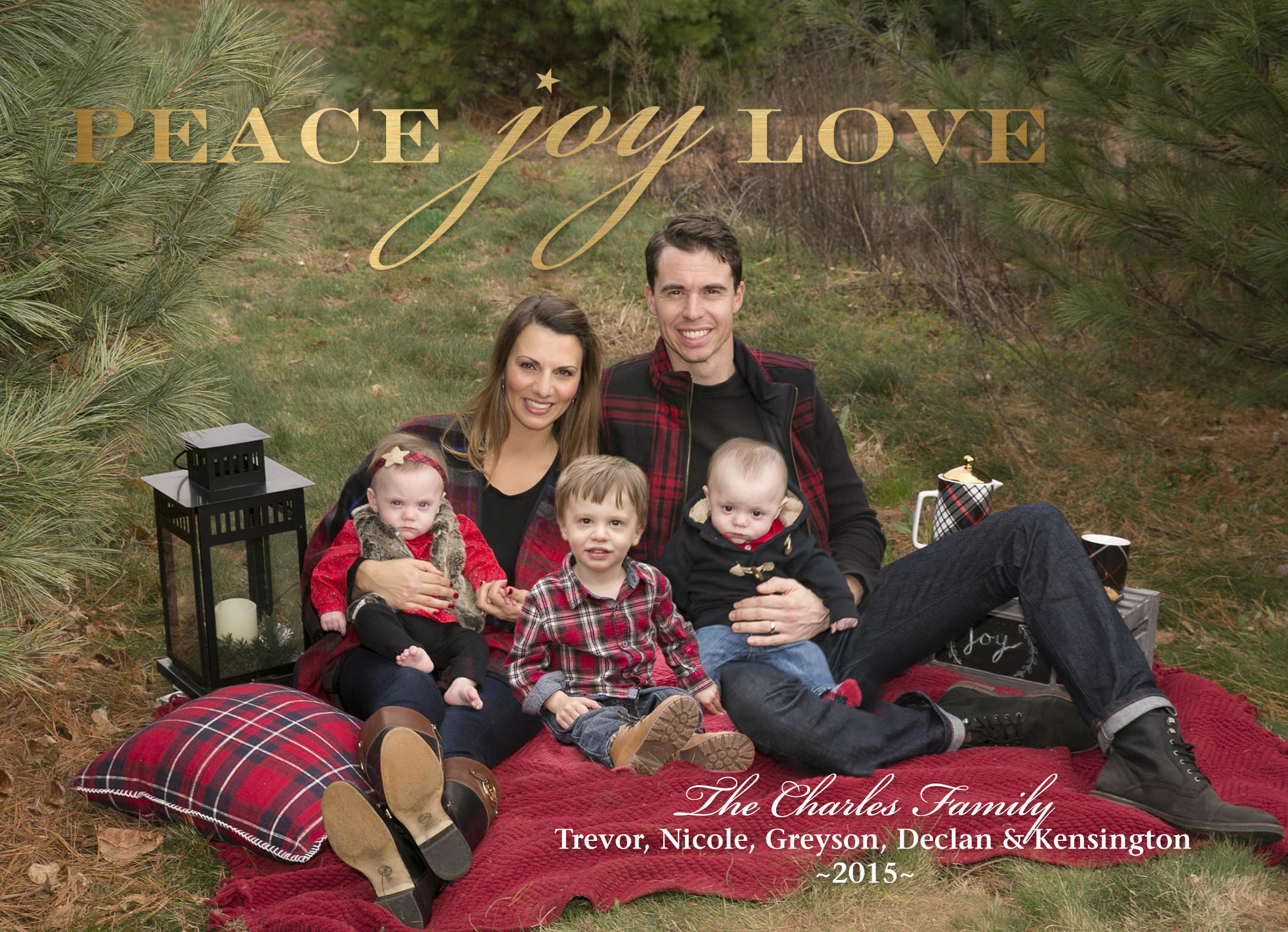 Tips Ideas And Inspiration For Planning A Family Holiday Card The Green Robe