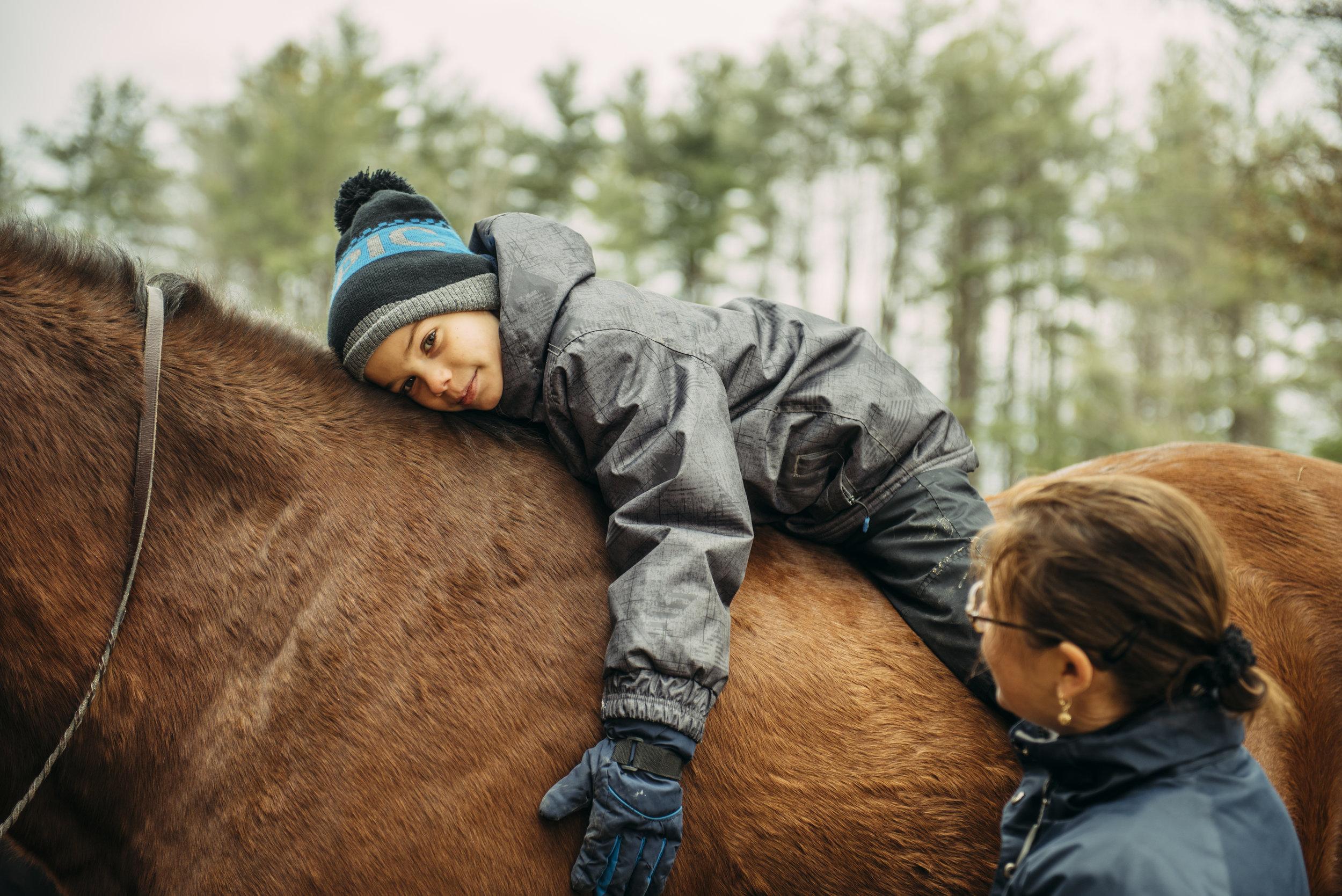 Soins des chevaux - – L'entraînement– L'équipement équestre– La pension– Les visites du vétérinaire– Le parage