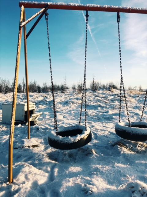 swing on farm .JPG